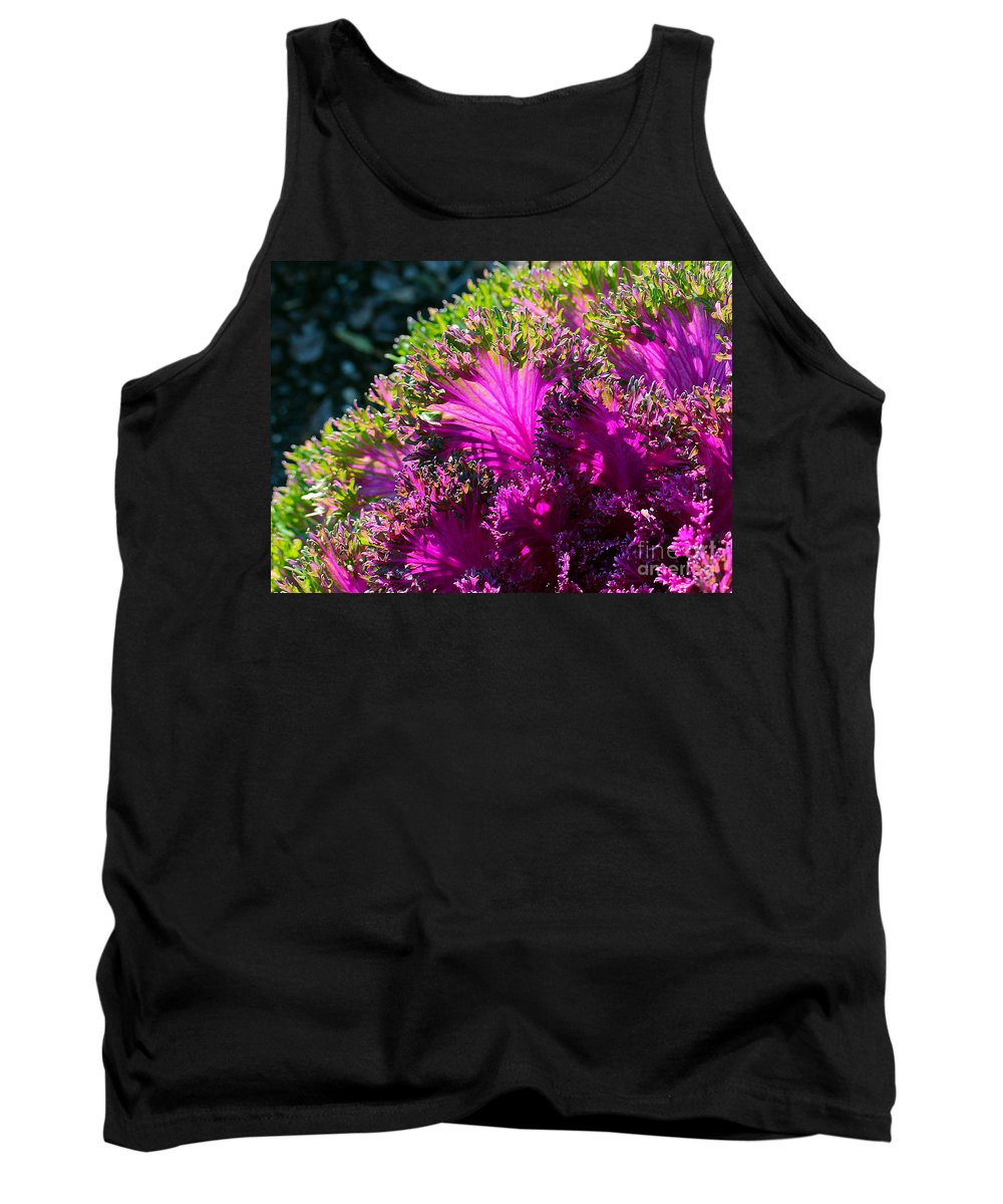 Cabbage Tank Top featuring the photograph Cabbage by Judi Bagwell