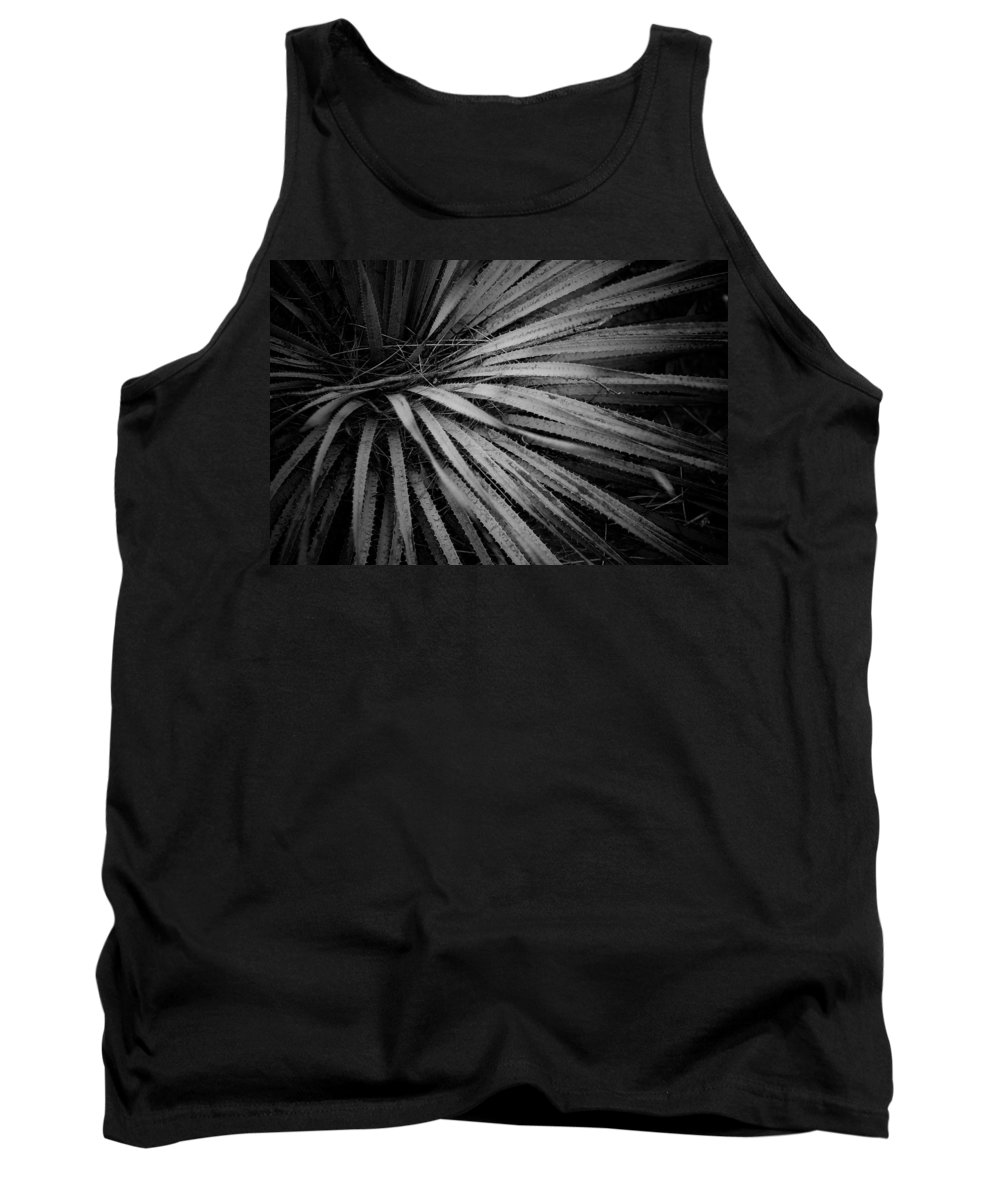 Botanicals Tank Top featuring the photograph Cactus 5250 by Timothy Bischoff