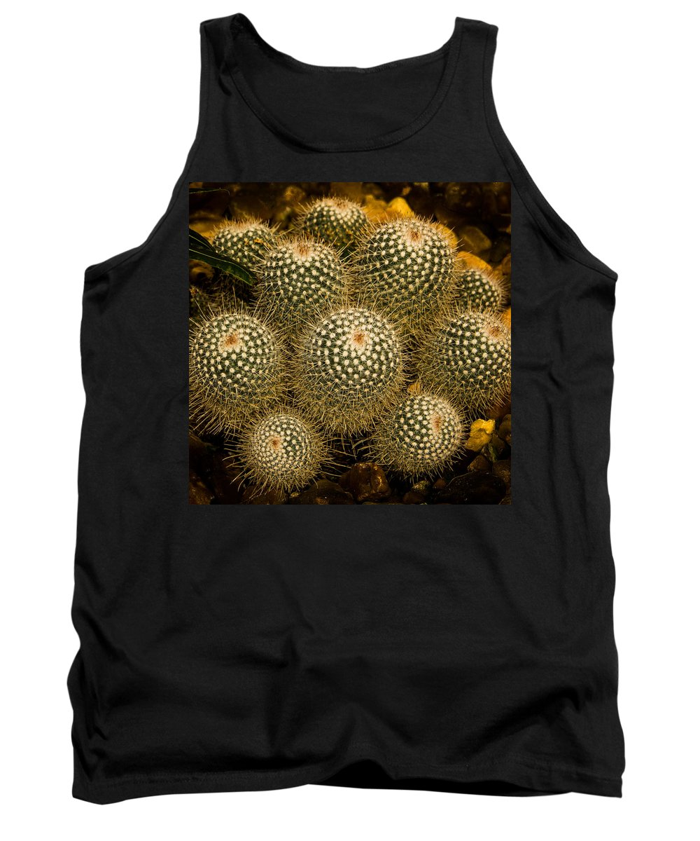 Garden Tank Top featuring the photograph Cactus by Michael J Samuels