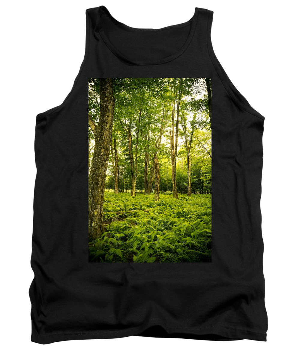 Canaan Valley Tank Top featuring the photograph Canaan Path by Shane Holsclaw