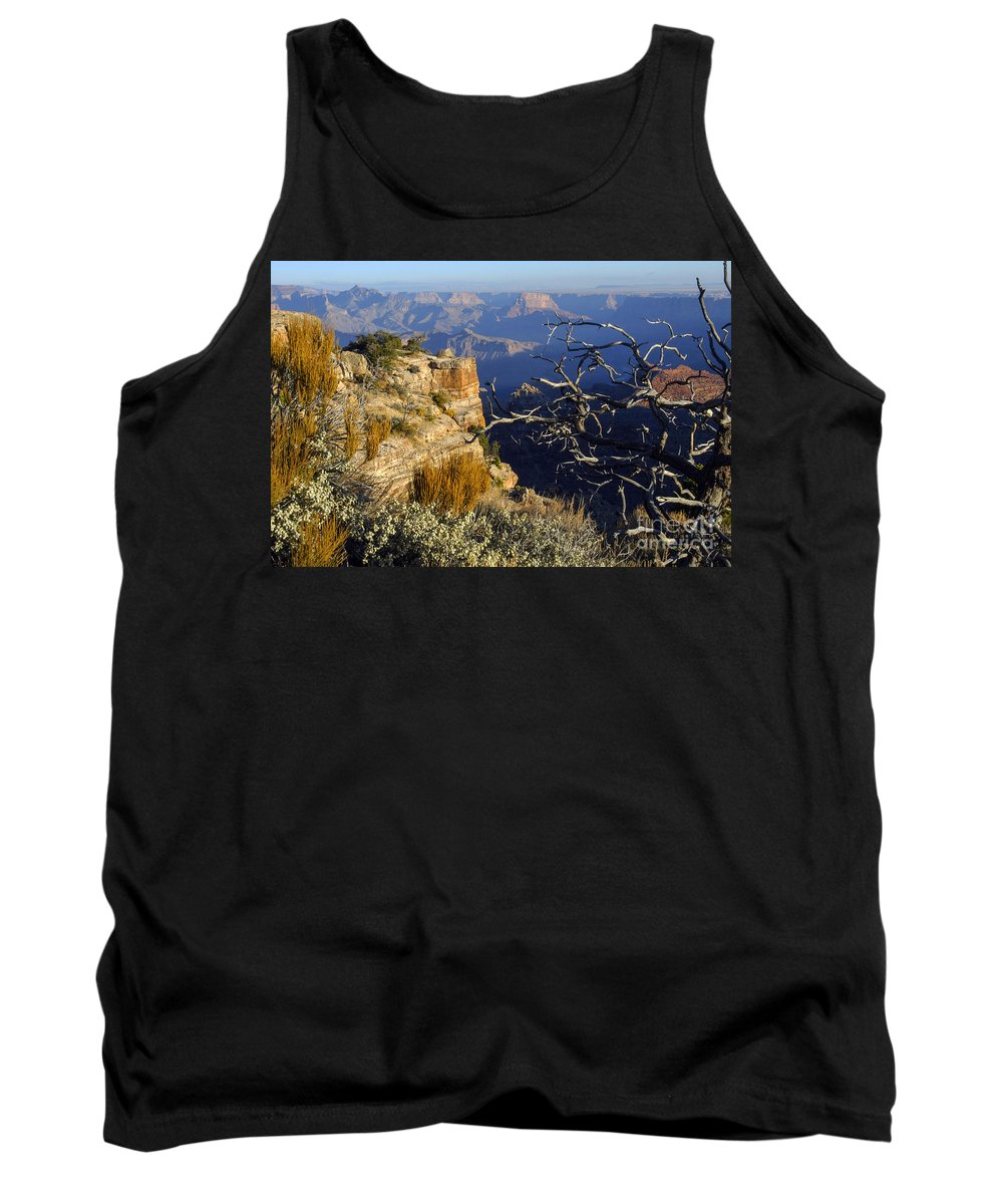 Grand Canyon National Park Arizona Parks South Rim Canyons Rock Formations Rock Formation Sunrise Sunrises Landscape Landscapes Tree Trees Foliage Tank Top featuring the photograph Canyon Foliage by Bob Phillips