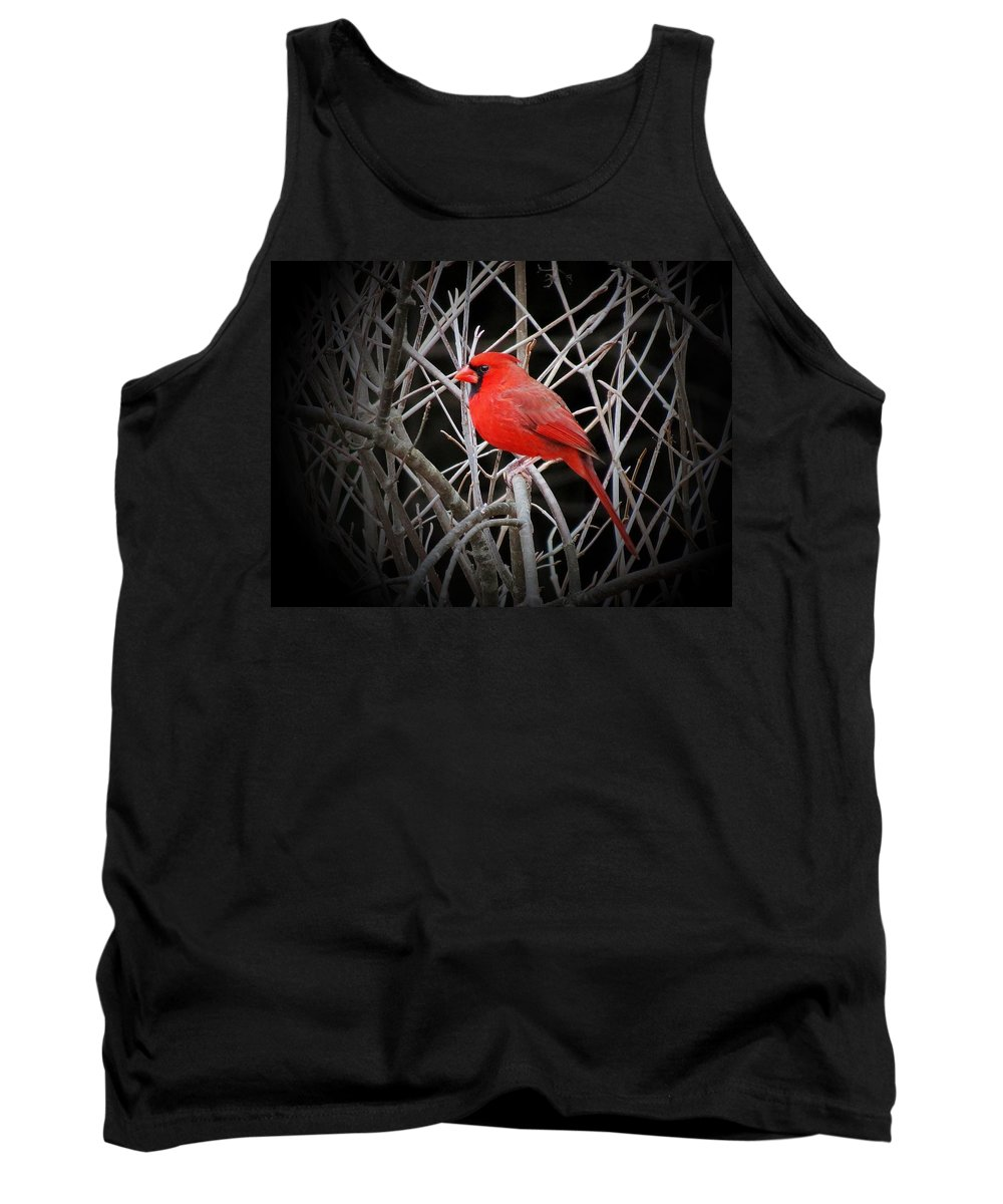 Bright Tank Top featuring the photograph Cardinal Red With Black by MTBobbins Photography