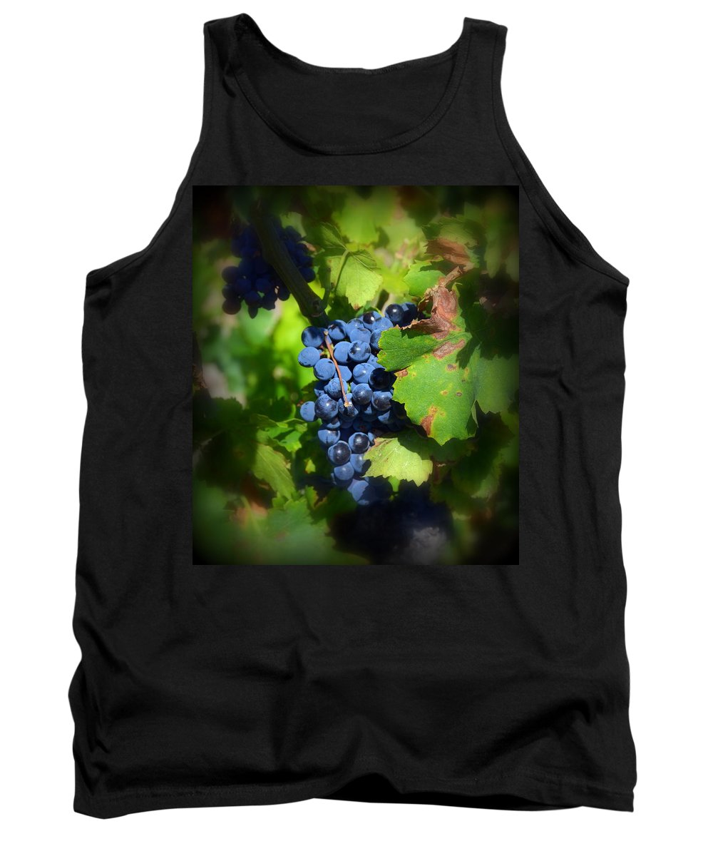 Chateauneuf Tank Top featuring the photograph Chateauneuf Du Pape Hidden Treasure by Carla Parris