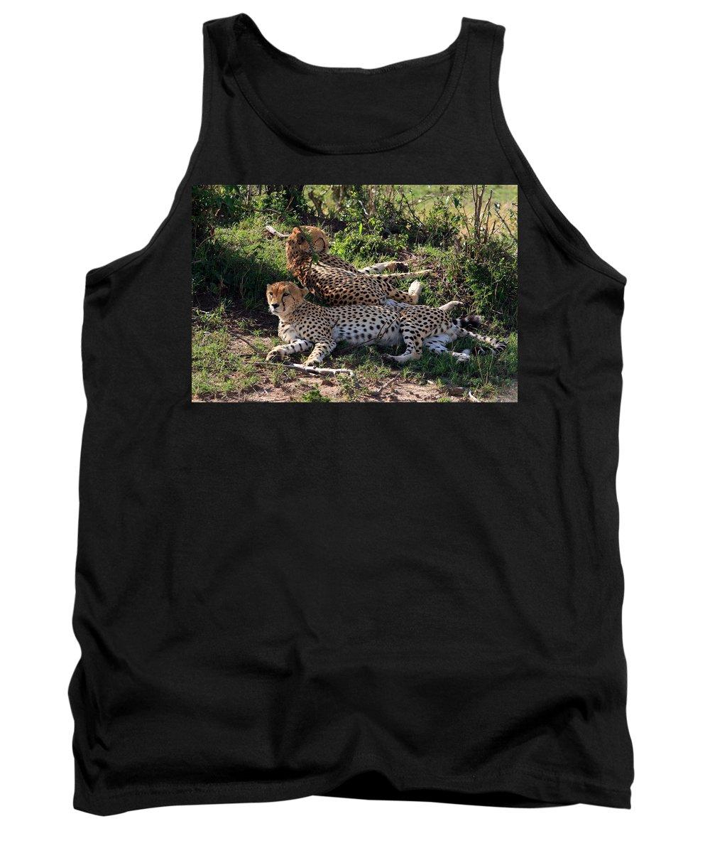 Africa Tank Top featuring the photograph Cheetahs Of The Masai Mara by Aidan Moran