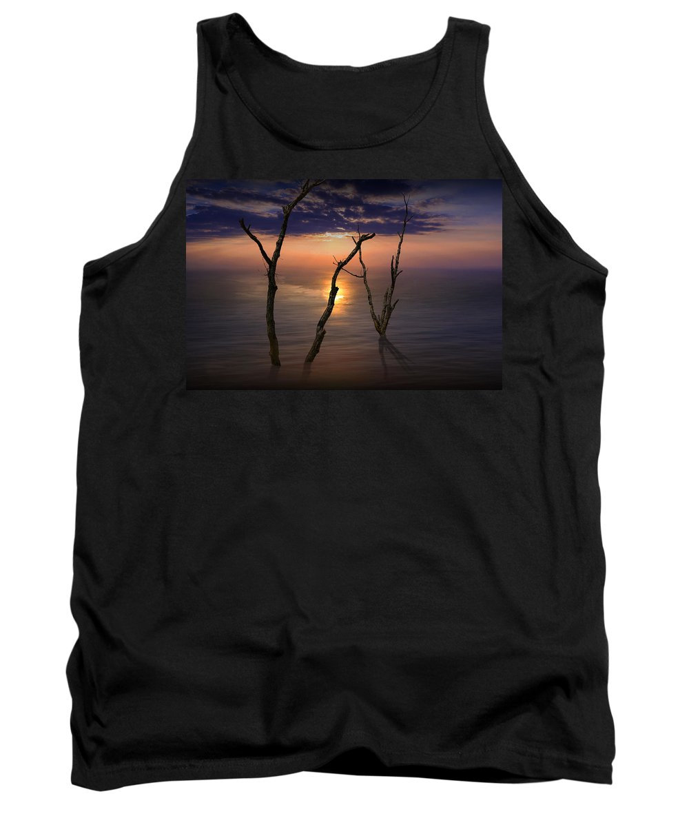 Landscape Tank Top featuring the photograph Colorful Sunset Seascape With Tree Trunks by Randall Nyhof