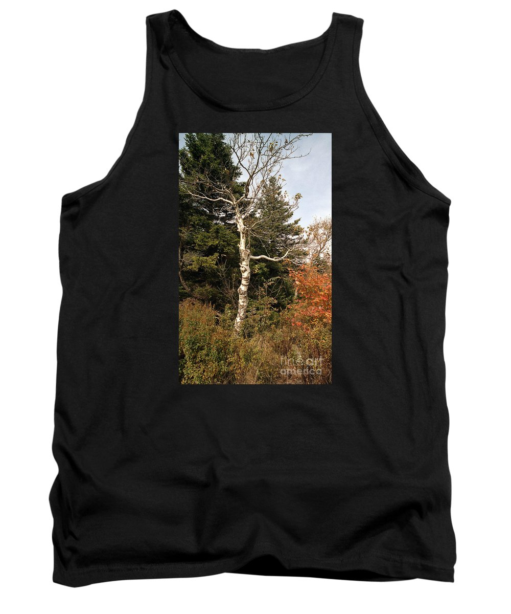Scenic Tours Tank Top featuring the photograph Competition by Skip Willits