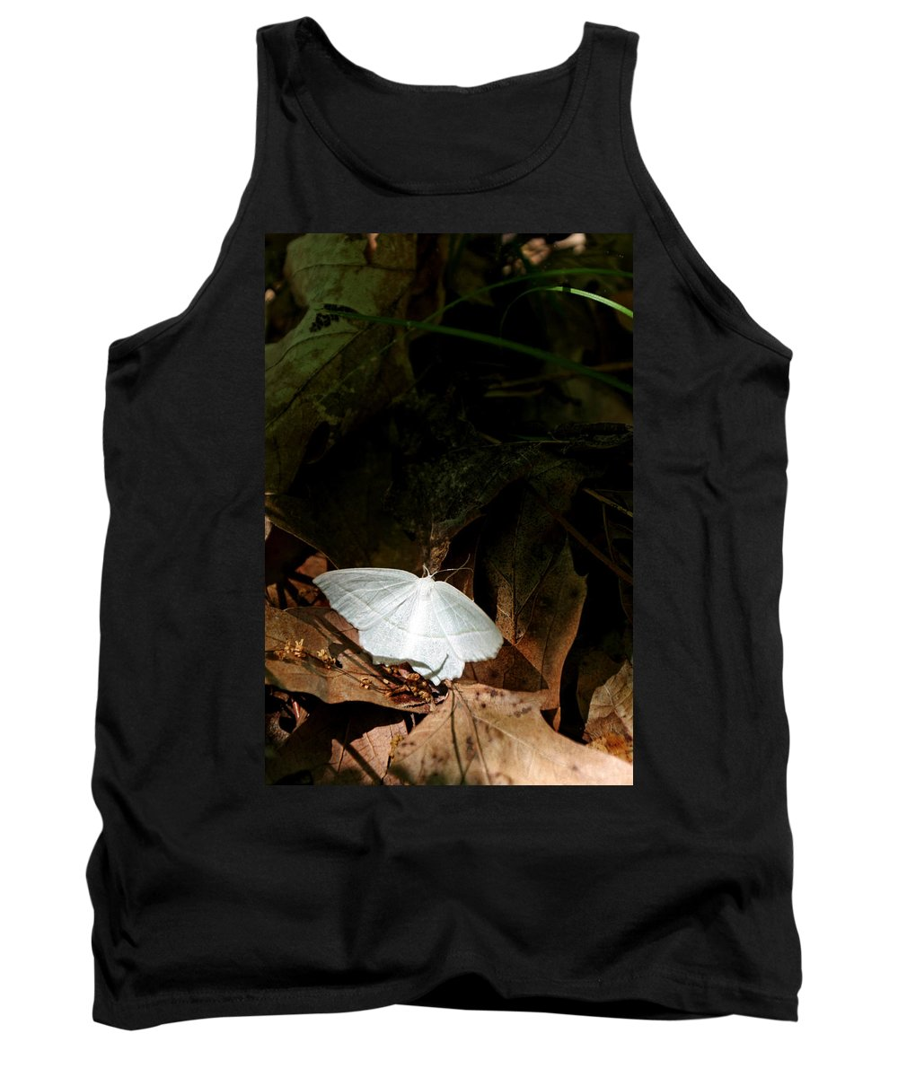 Moth Tank Top featuring the photograph Contrast by Allan Lovell