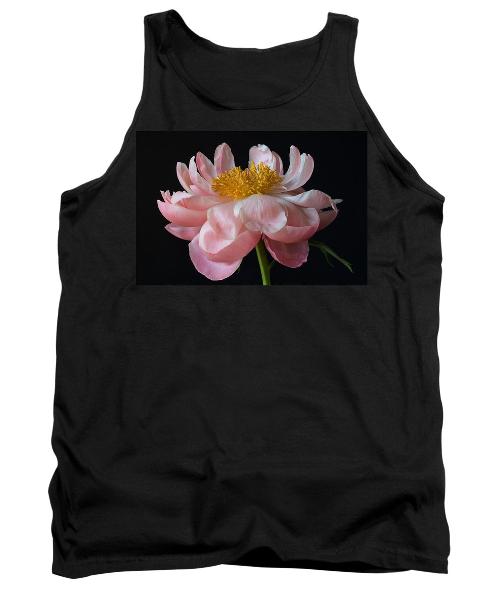 Peony Tank Top featuring the photograph Coral Peony by Kim Aston