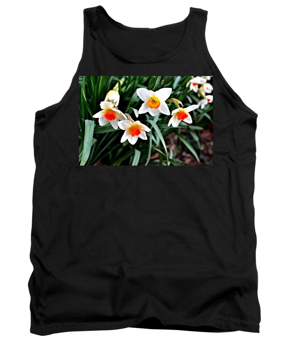 Daffodils Tank Top featuring the photograph Covenant Daffodils by Tara Potts