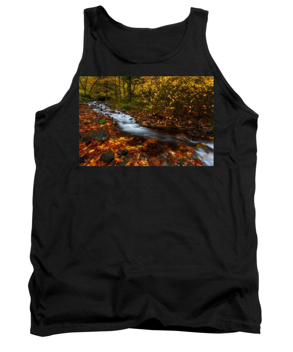 Fall Tank Top featuring the photograph Creekside Colors by Darren White