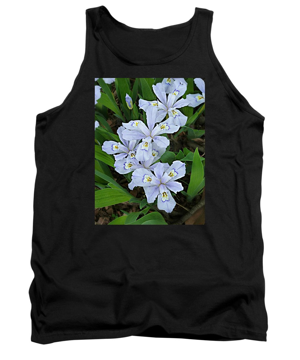 Iris Cristata Tank Top featuring the photograph Wild Blue Crested Iris by William Tanneberger