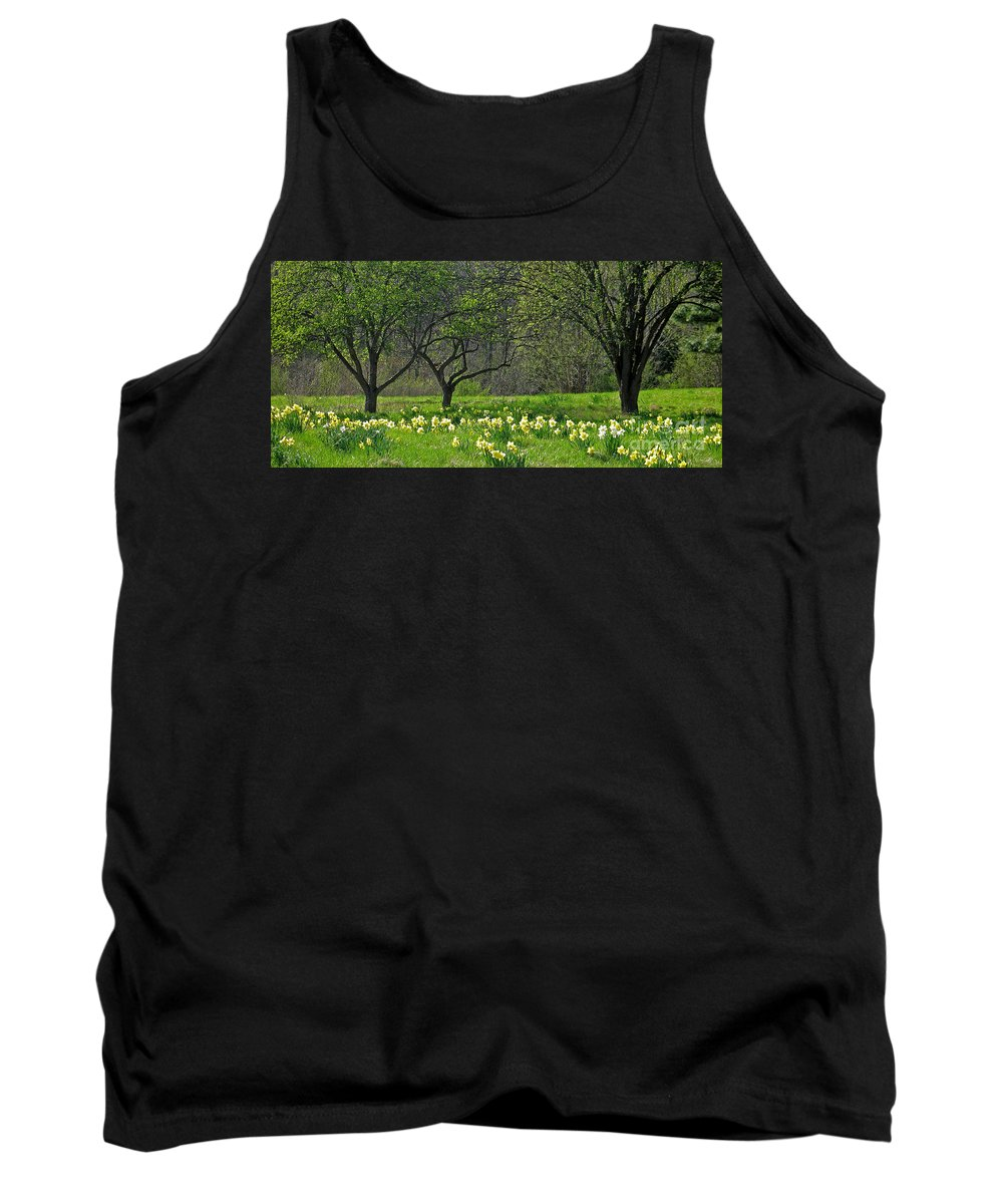 Spring Tank Top featuring the photograph Daffodil Meadow by Ann Horn