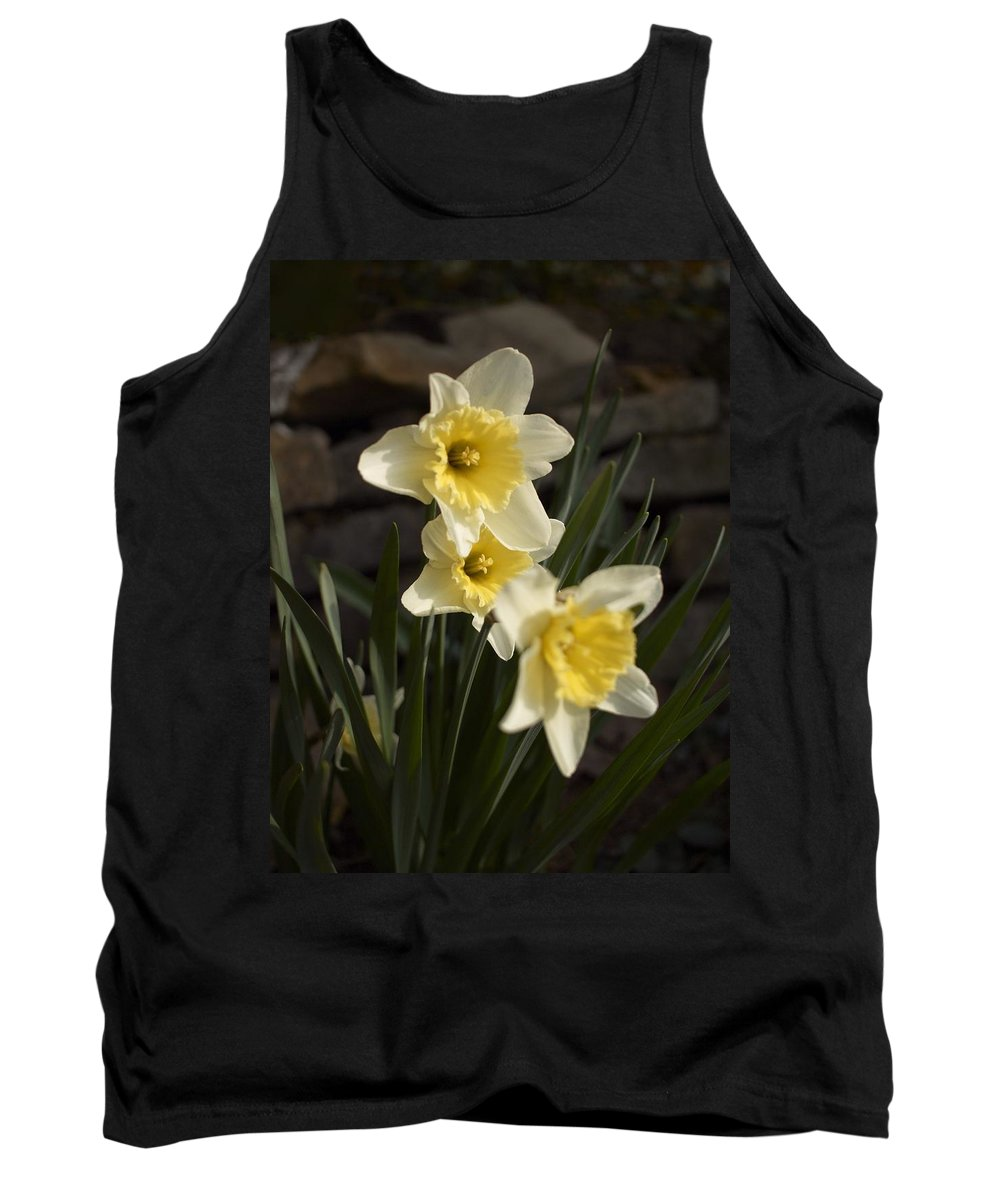 Daffodils Tank Top featuring the photograph Daffs by Steve Ondrus