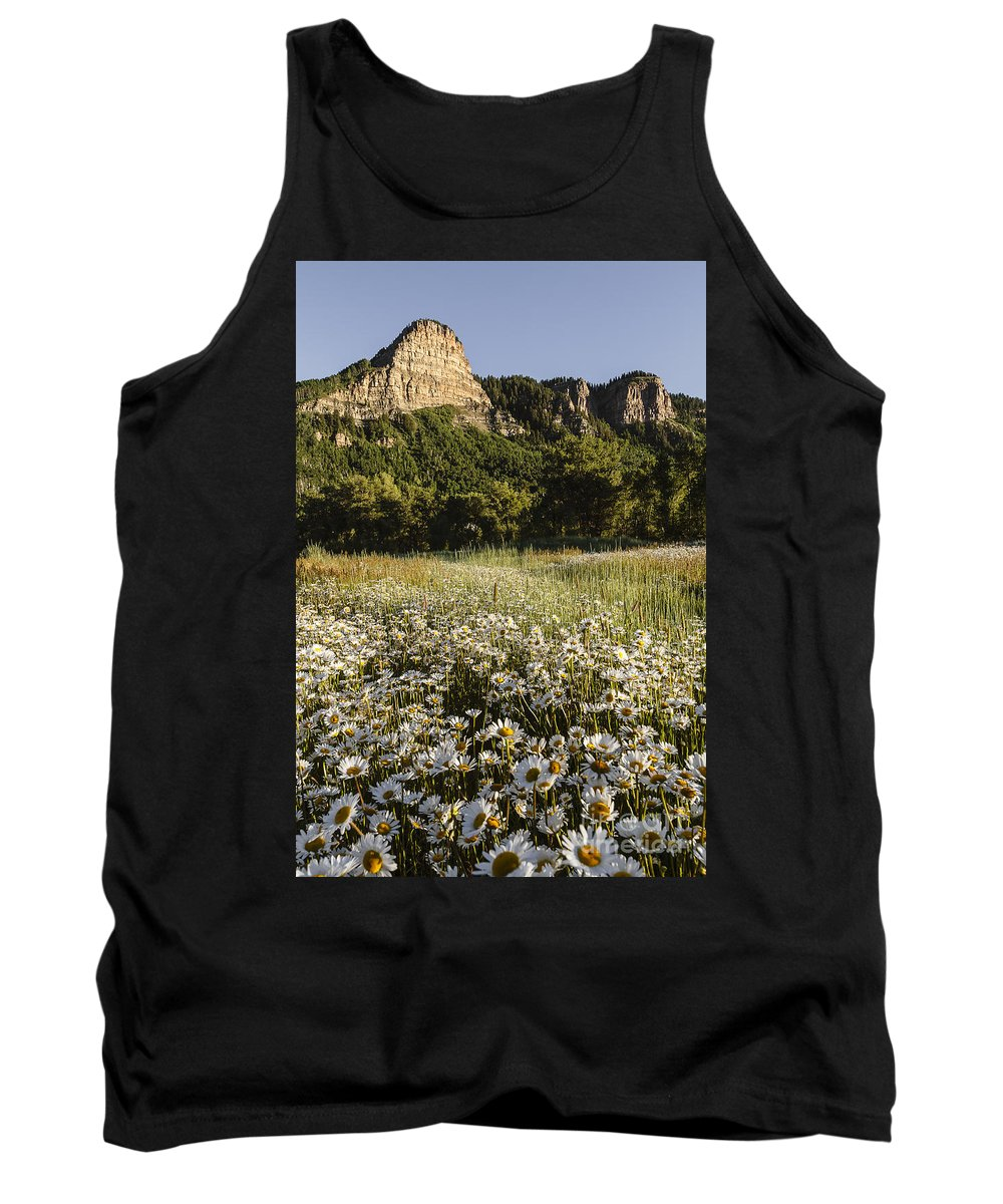 Daisies Tank Top featuring the photograph Durango Daisies by Dennis Hedberg