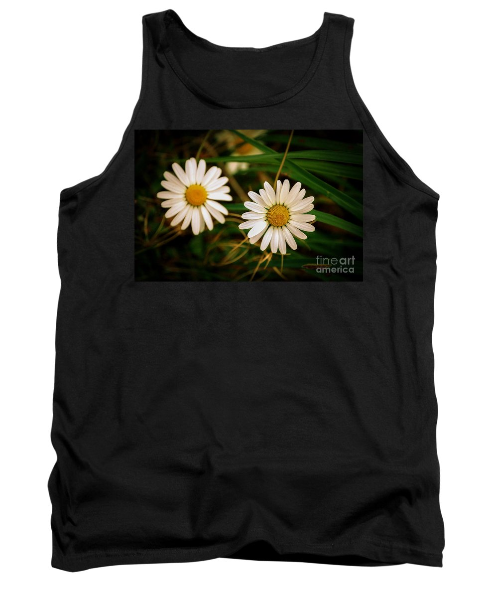 Flowers Tank Top featuring the photograph Daisies by Rich Priest