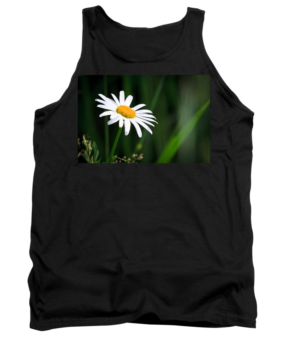 Flower Tank Top featuring the photograph Daisy - Bellis Perennis by Bob Orsillo