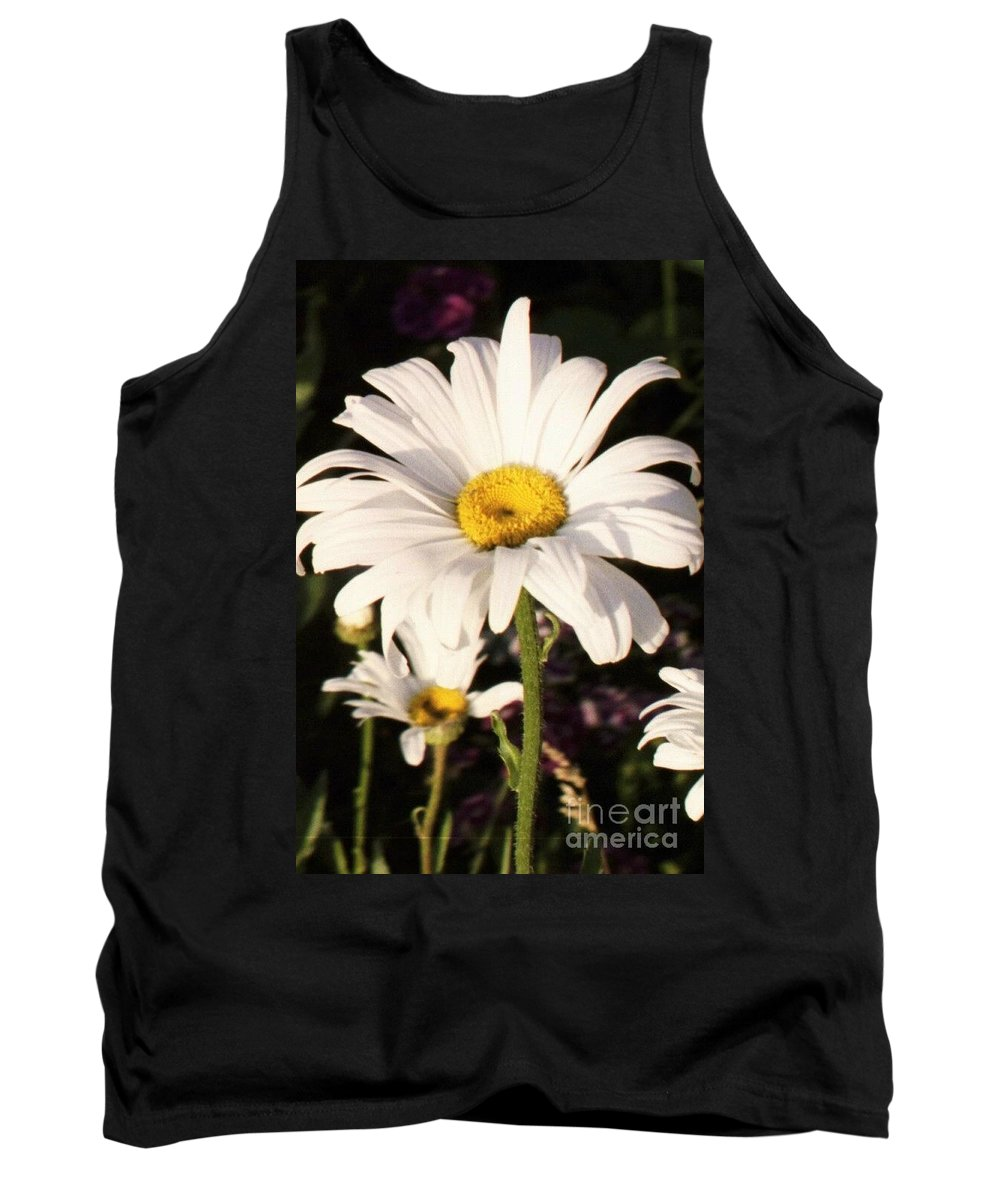 Daisy Tank Top featuring the photograph Daisy Close Up by Brandi Maher