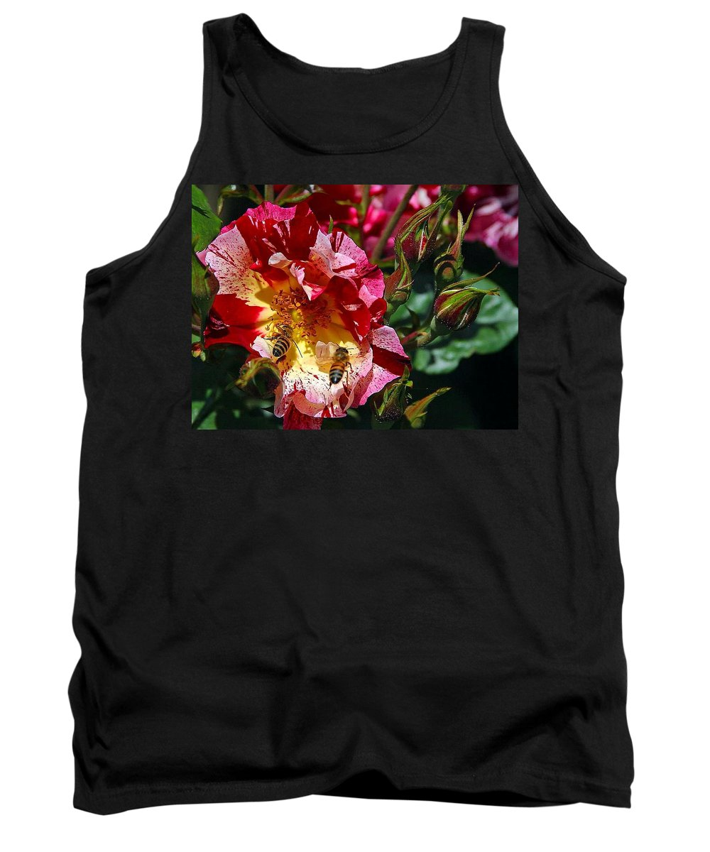 Bee Tank Top featuring the photograph Dancing Bees And Wild Roses by Absinthe Art By Michelle LeAnn Scott