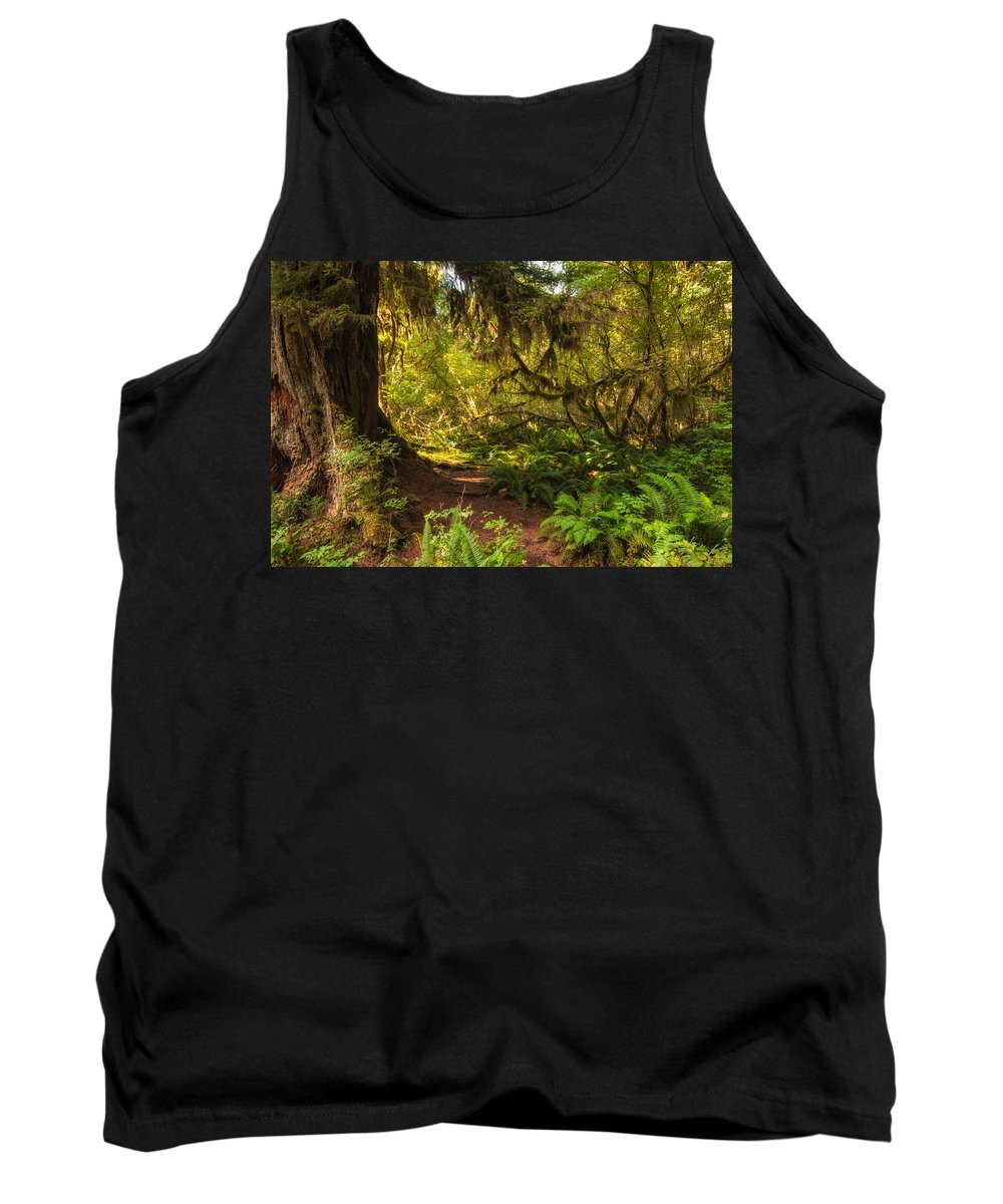 Hoh Rain Forest Tank Top featuring the photograph Deep Into The Hoh Rain Forest by Rich Leighton