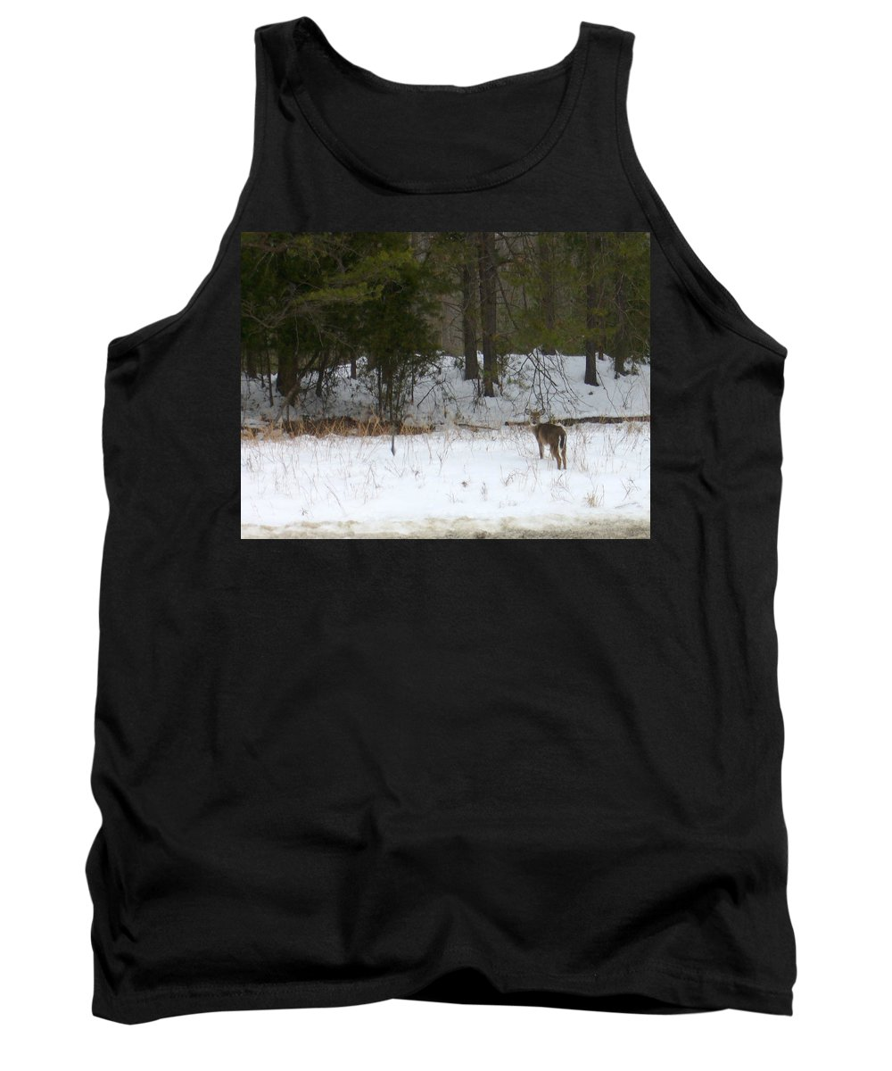 Snow Deer Tank Top featuring the photograph Eternity by Yow-Ning Chang
