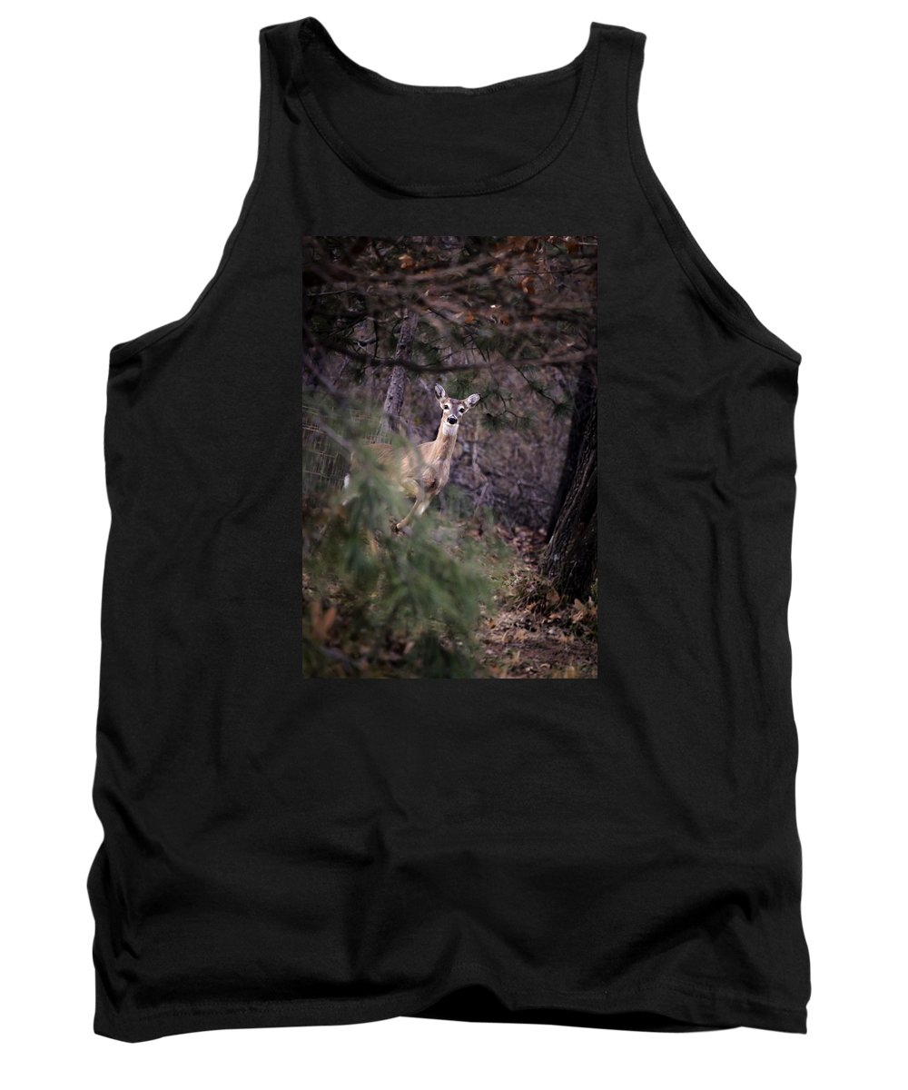 Deer Tank Top featuring the photograph Deer's Stomping Grounds. by Joshua Martin