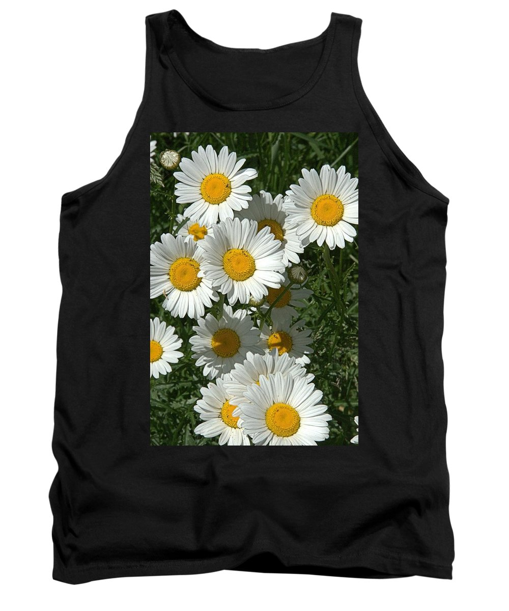 Daisy Tank Top featuring the photograph Delightful Daisies by Valerie Kirkwood