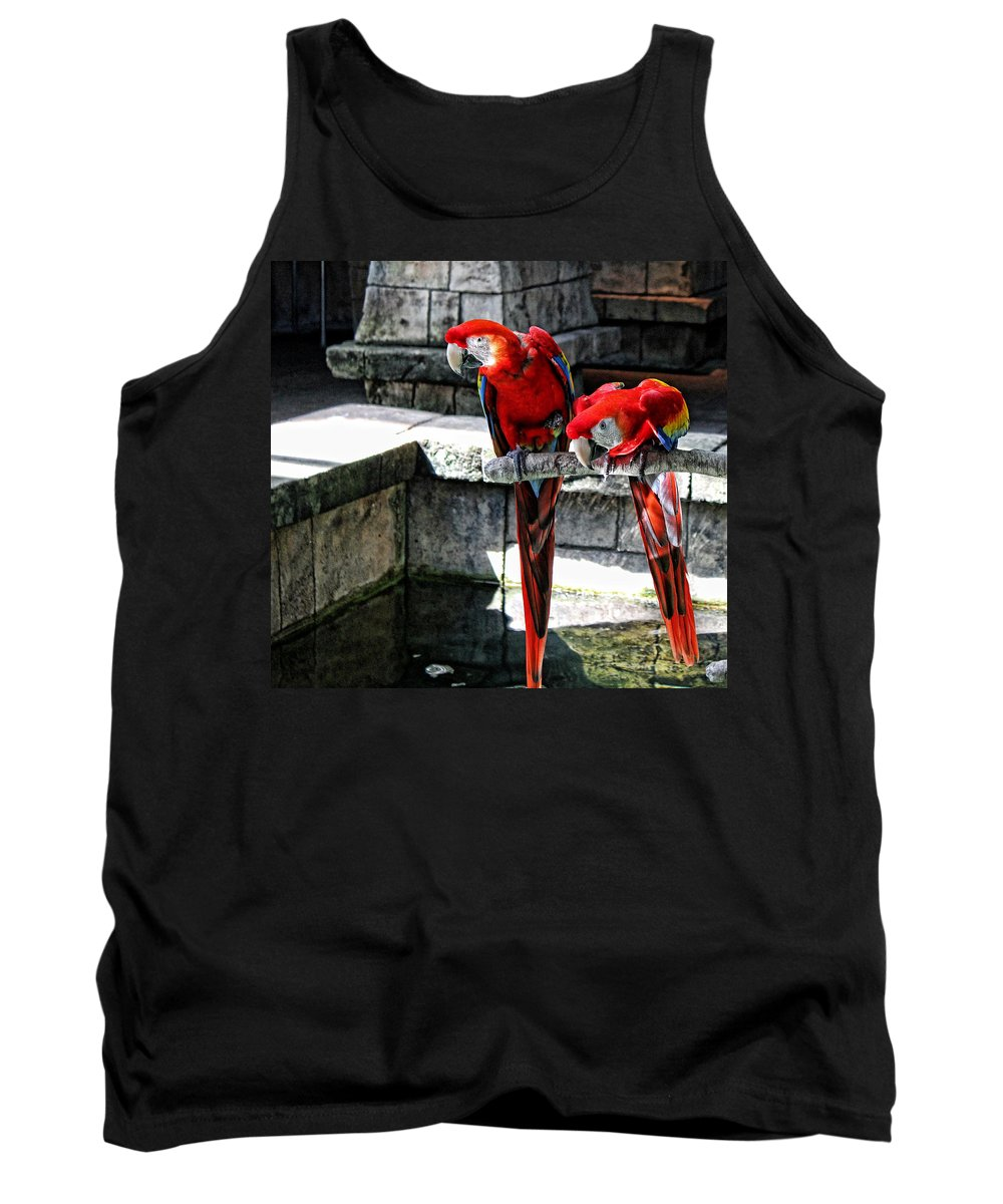 Scarlet Macaw Tank Top featuring the photograph Did You See That by Judy Vincent