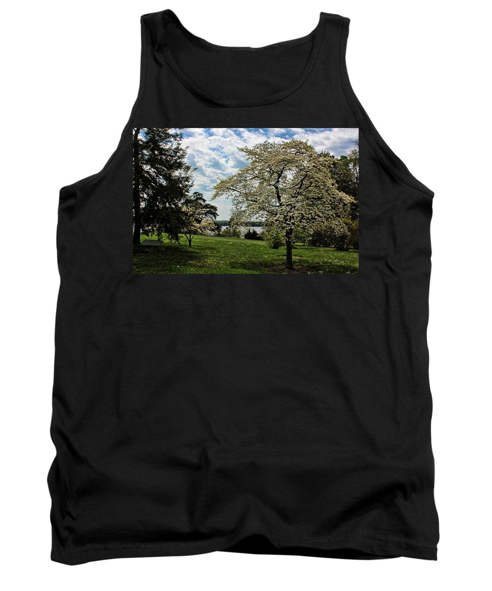 Dogwood Tank Top featuring the photograph Dogwoods In Summer by Judy Vincent