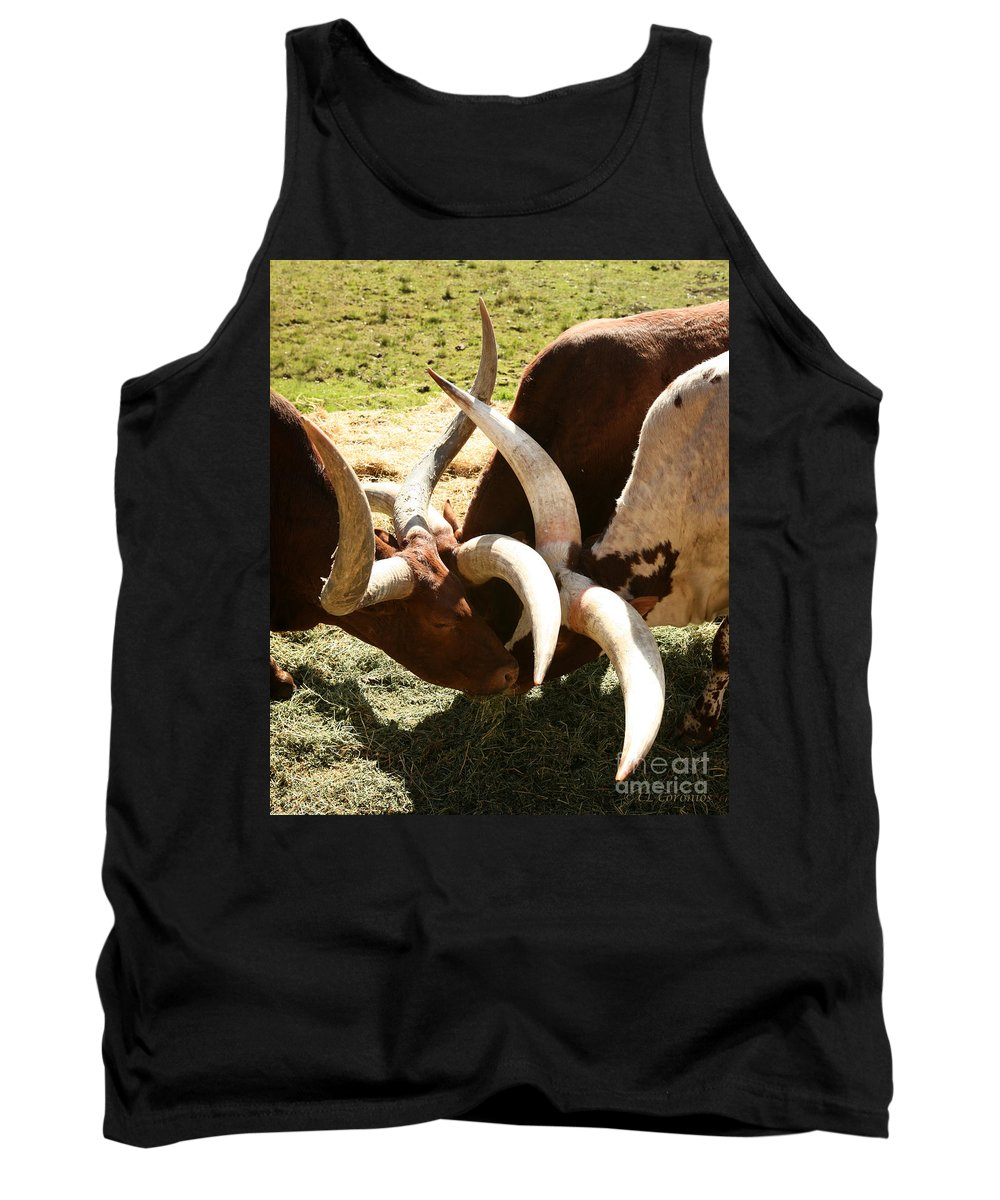 Watusi Tank Top featuring the photograph Doing The Watusi by Carol Lynn Coronios
