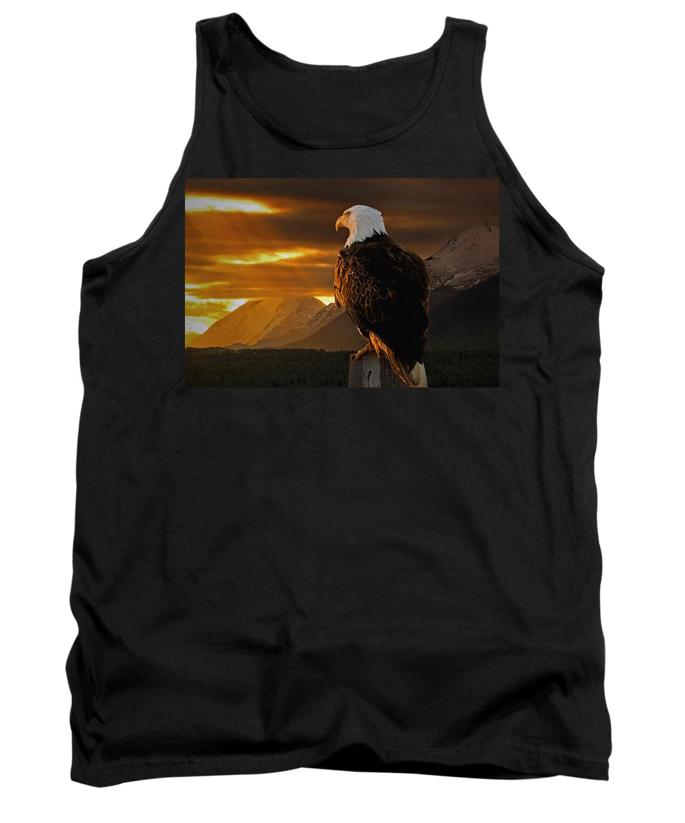 Eagle Tank Top featuring the photograph Domain by Ron Day