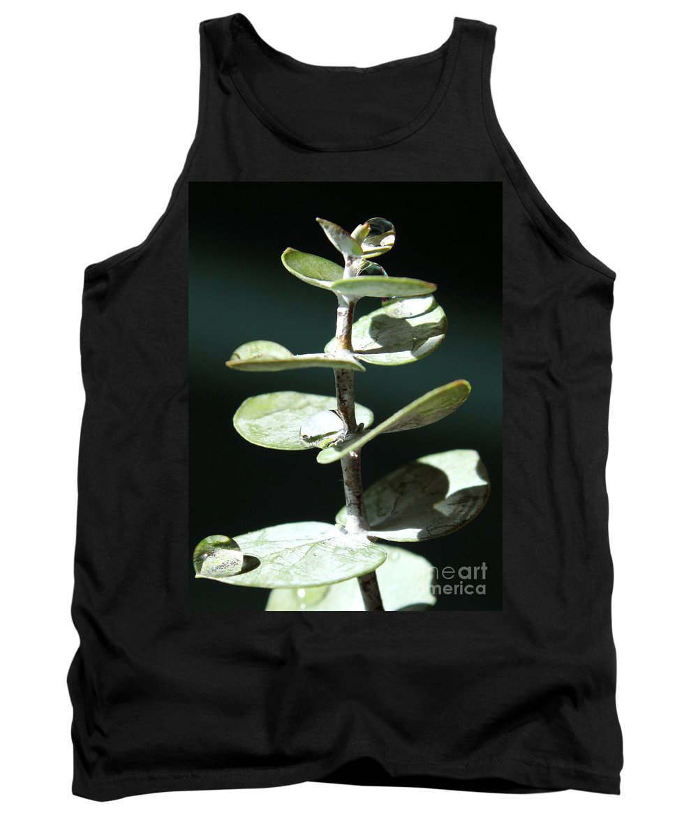 Eucalyptus Tank Top featuring the photograph Eucalyptus Tears by Krissy Katsimbras