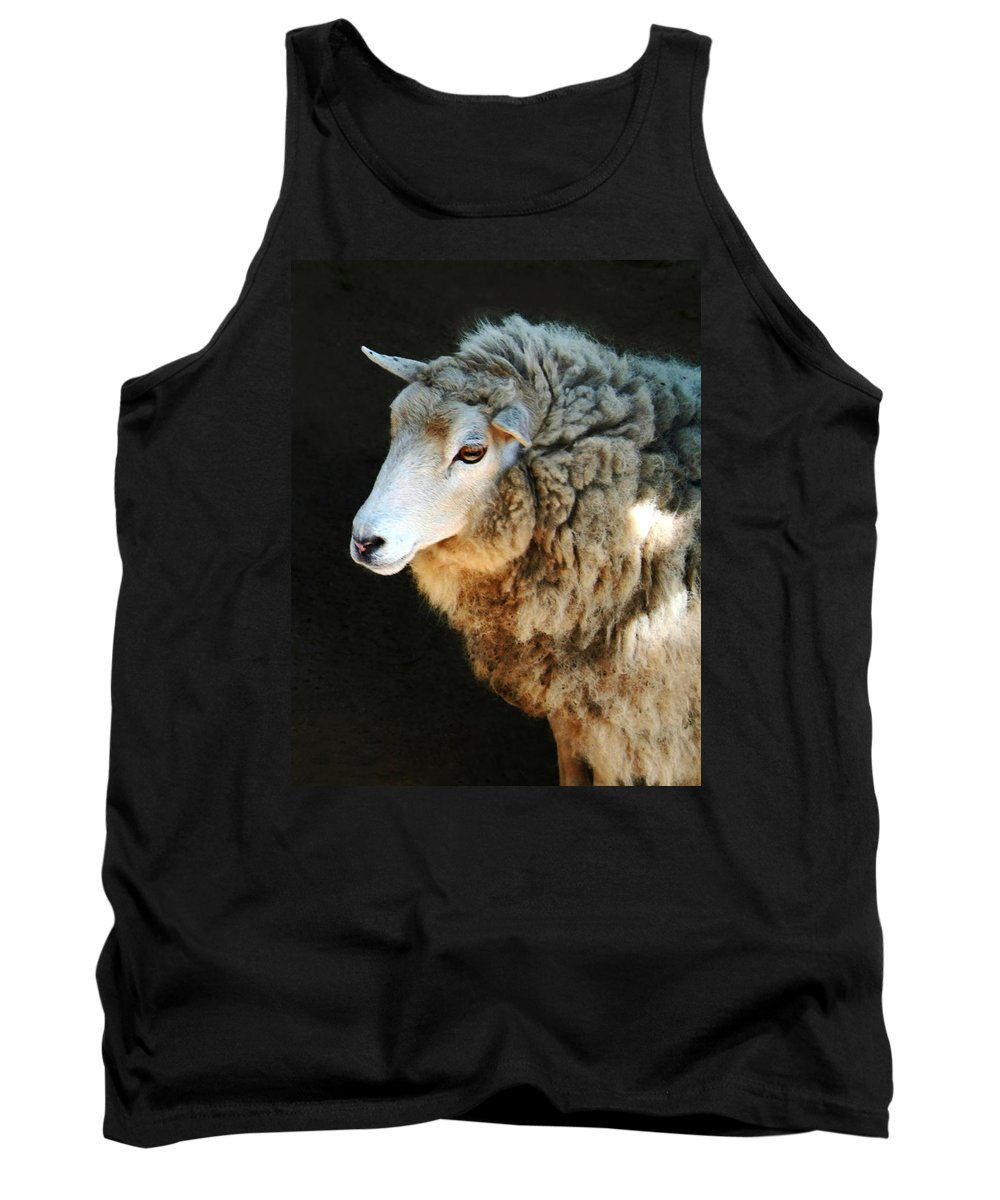 Ewe Are So Beautiful Tank Top featuring the photograph Ewe Are So Beautiful by Ellen Henneke