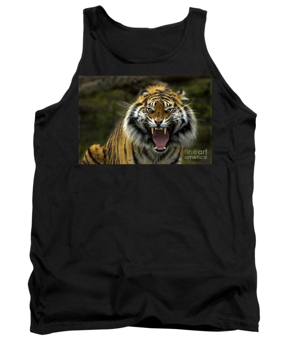 Tiger Tank Top featuring the photograph Eyes Of The Tiger by Mike Dawson