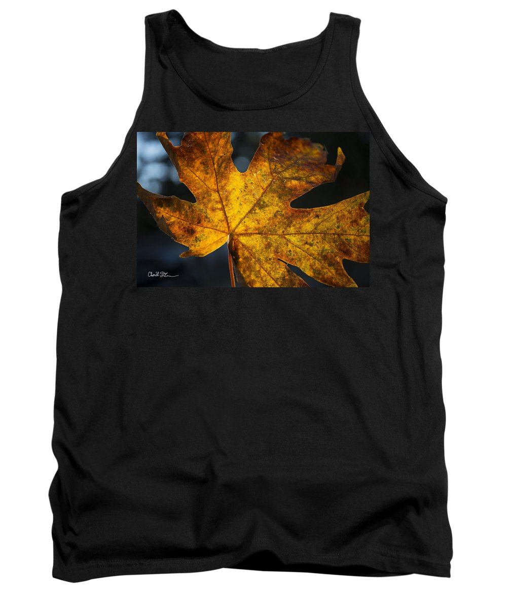 Fall Tank Top featuring the photograph Fall Leaf by Charlie Duncan