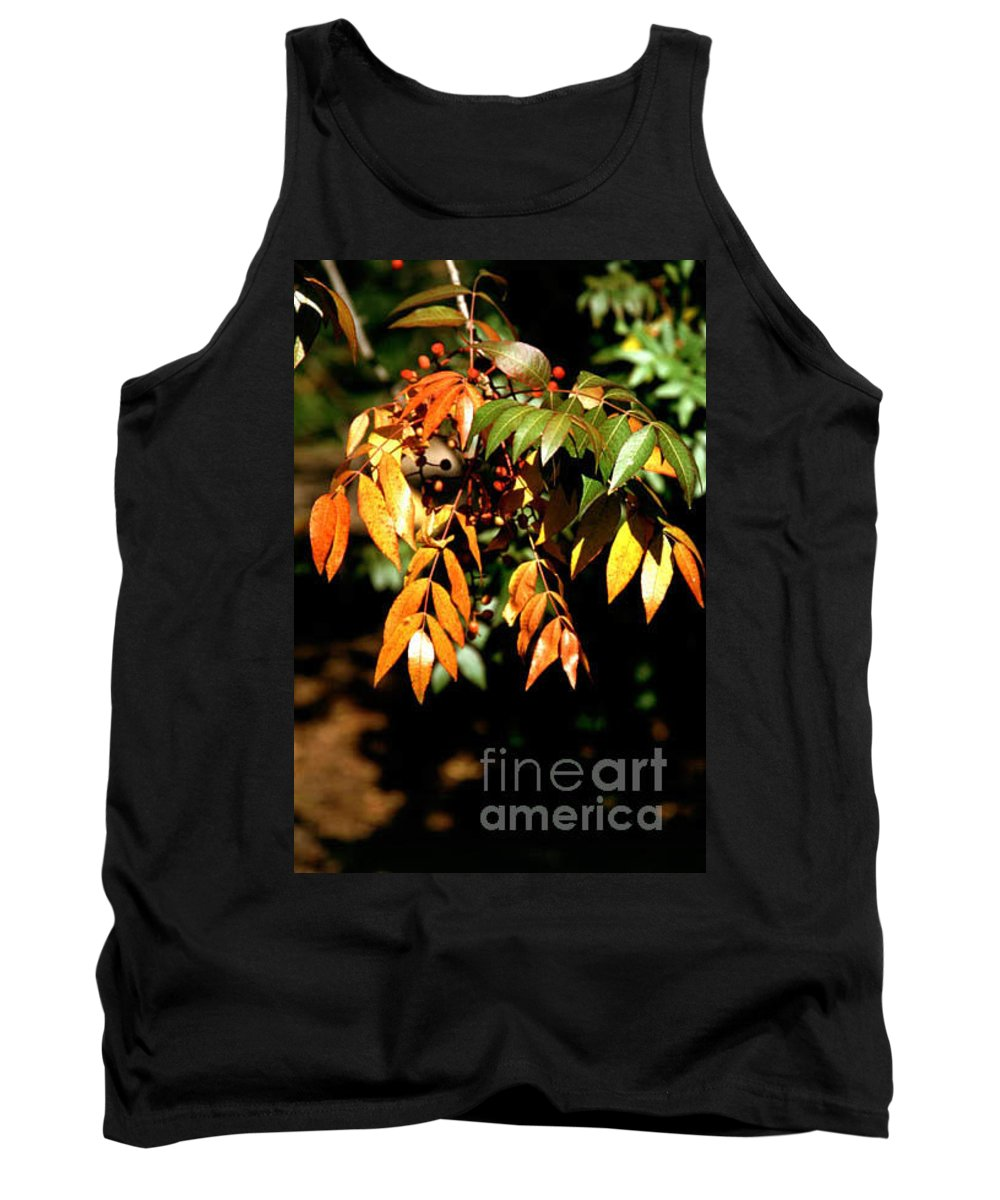Fall Color Tank Top featuring the photograph Fall Leaves by Kathy McClure