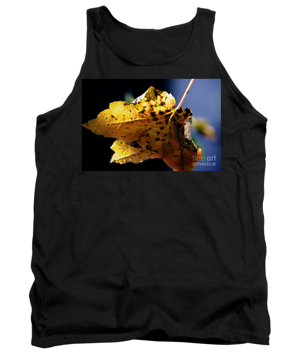 Maple Leaf Tank Top featuring the photograph Fall Maple Leaf by Dale Powell