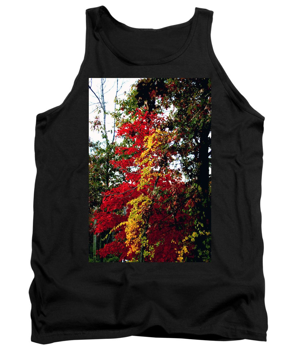 Fall Tank Top featuring the photograph Falls Brilliance by Pablo Rosales