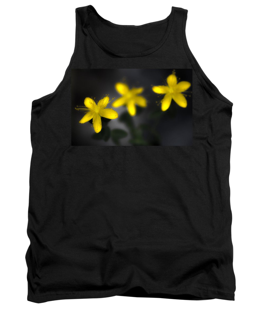 Flowers Tank Top featuring the photograph Fell Through Yellow by The Artist Project