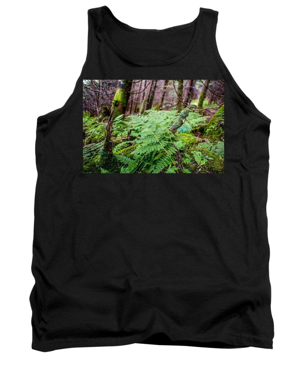 Fern Tank Top featuring the photograph Fern In Forest by Alex Grichenko