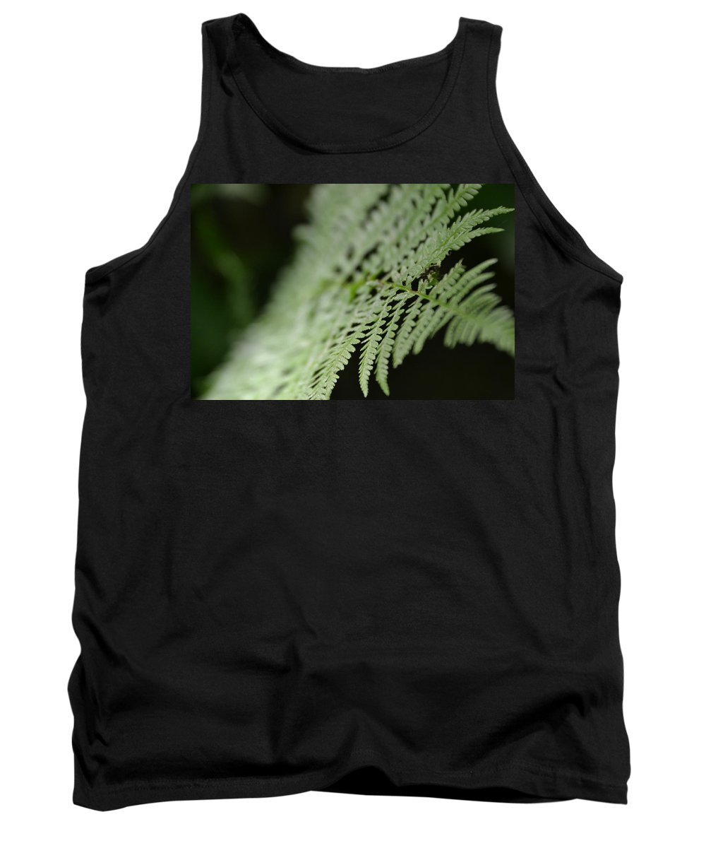 Tank Top featuring the photograph Fern Leaf by Katerina Naumenko