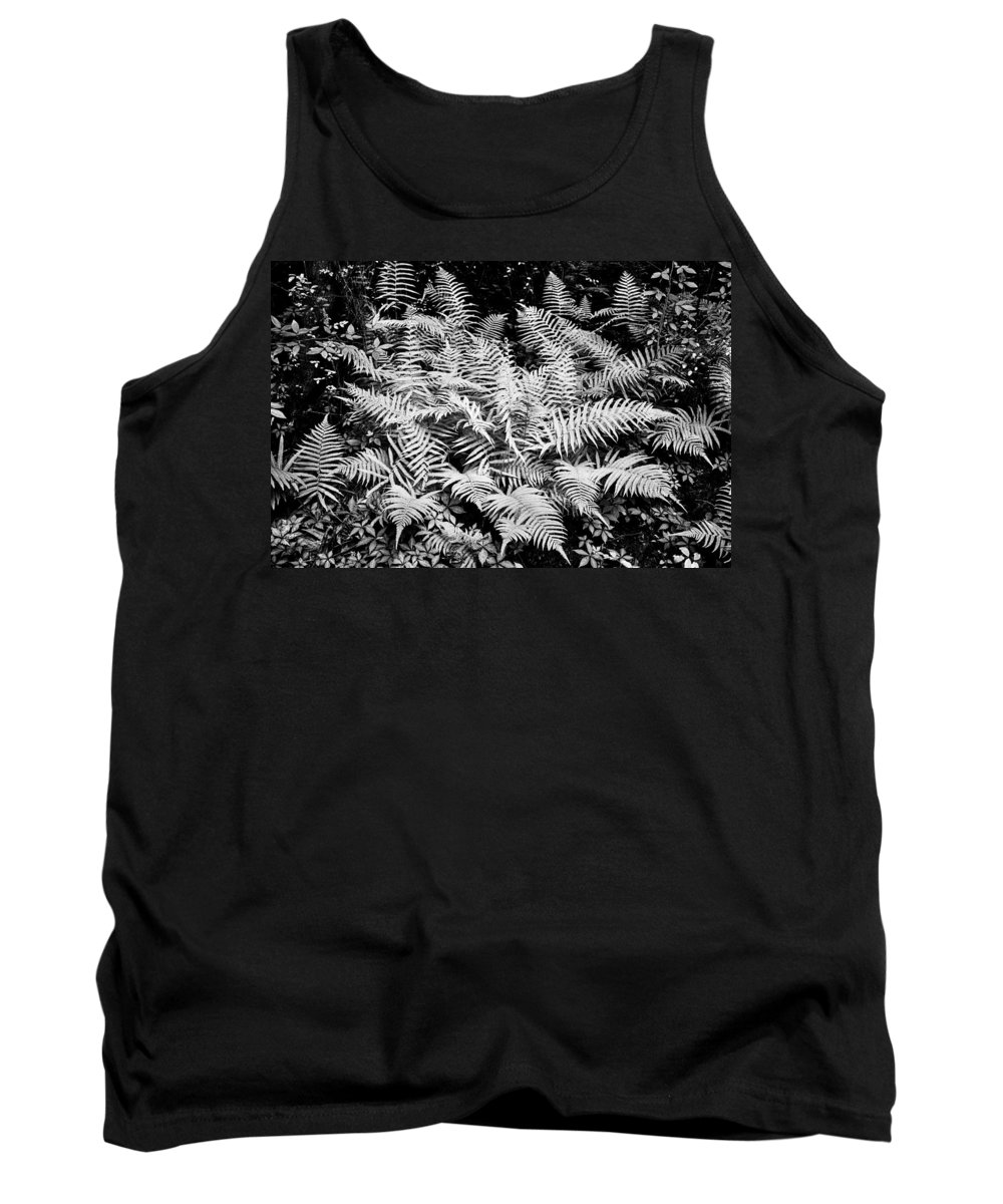 Ferns Tank Top featuring the photograph Ferns Baton Rouge La Infrared Dsc04475 by Greg Kluempers