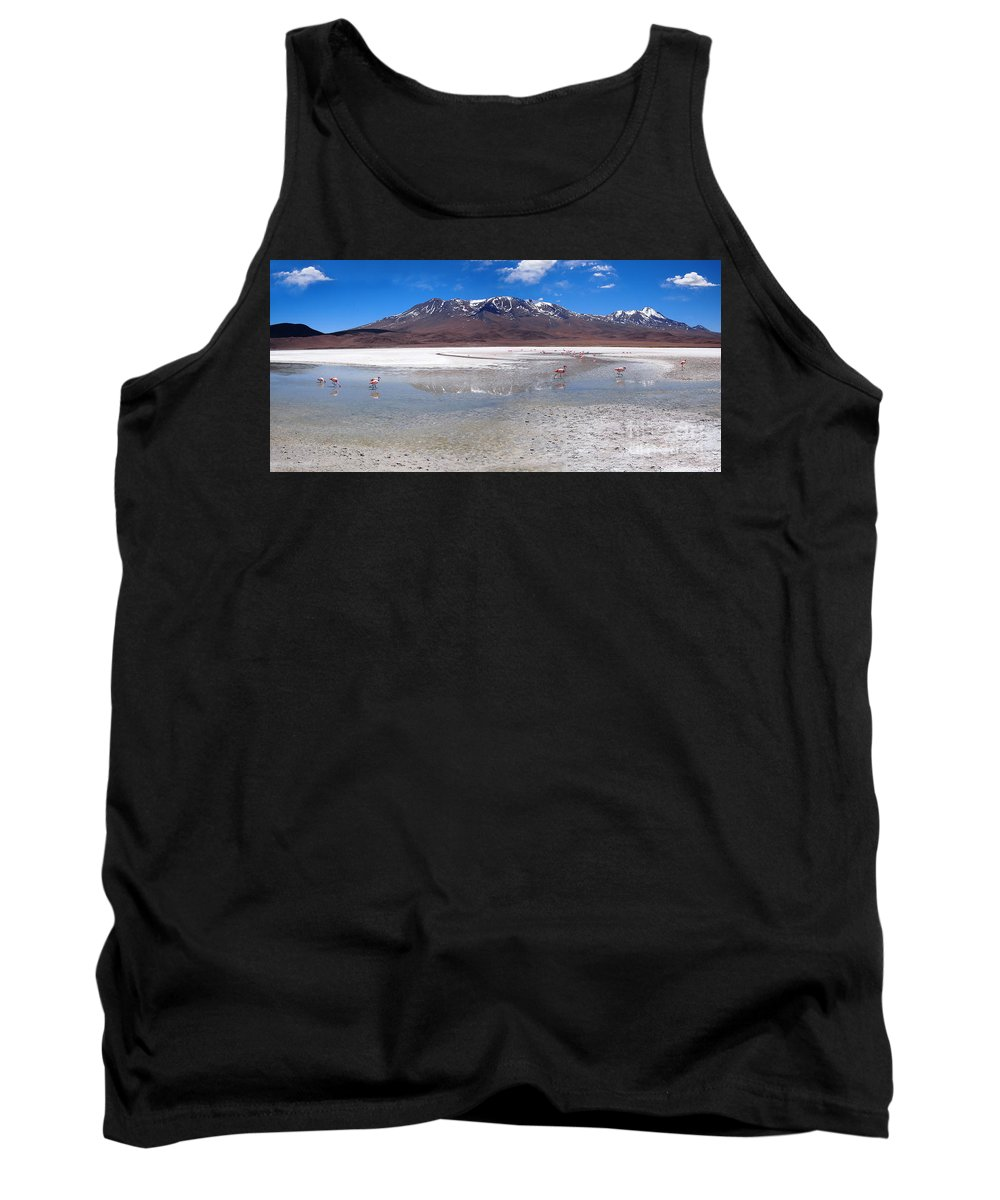 Bolivia Tank Top featuring the photograph Flamingos At The Altiplano In A Salt Lake by IPics Photography