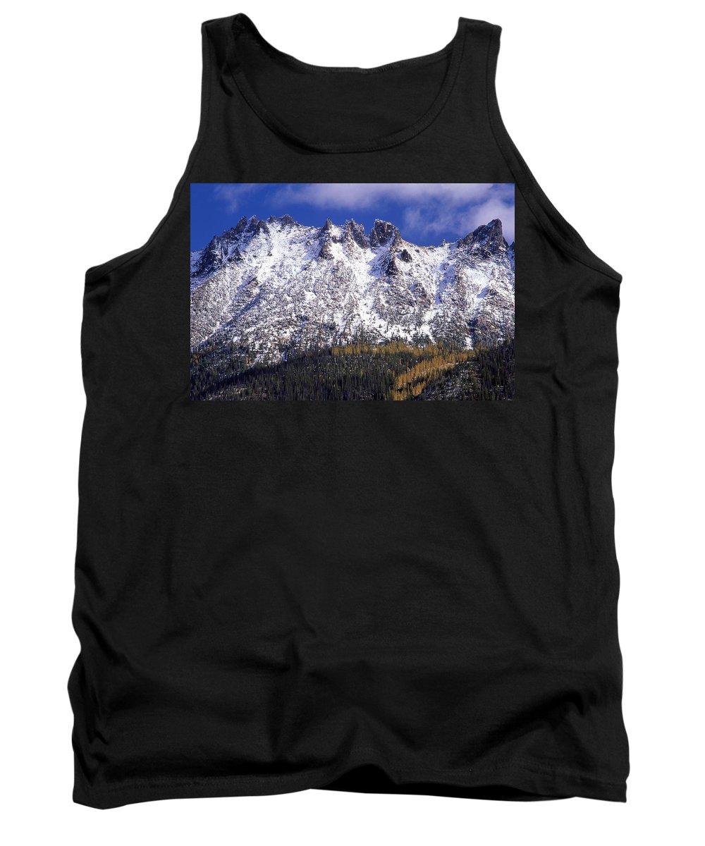 Snow Tank Top featuring the photograph Forest Gold by Ginny Barklow