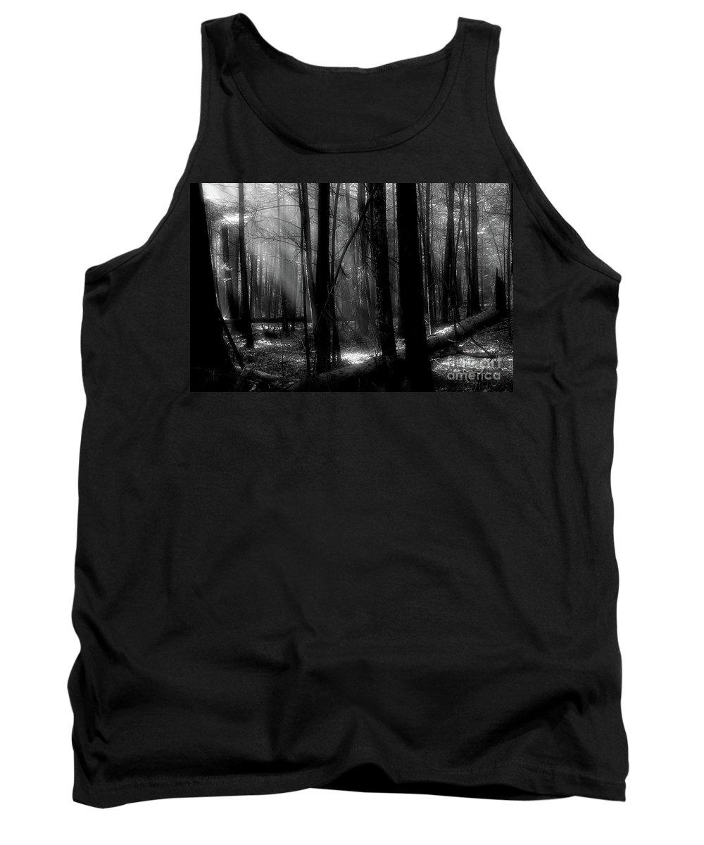 Tress Tank Top featuring the photograph Forest Light In Black And White by Douglas Stucky