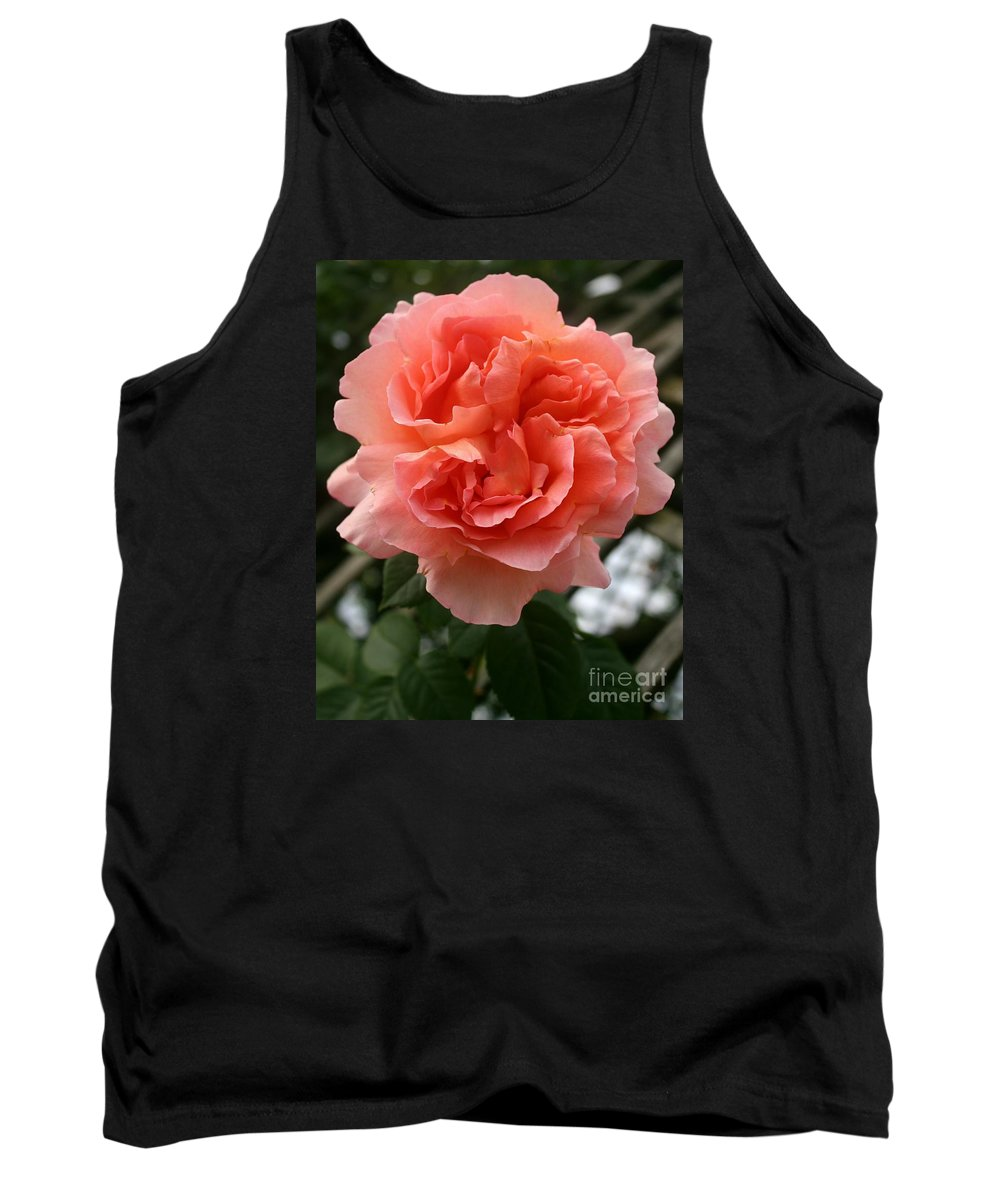 Rose Tank Top featuring the photograph Formidable Bloom by Christiane Schulze Art And Photography