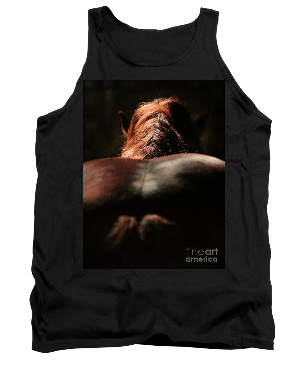Horse Tank Top featuring the photograph From The Back by Angel Ciesniarska
