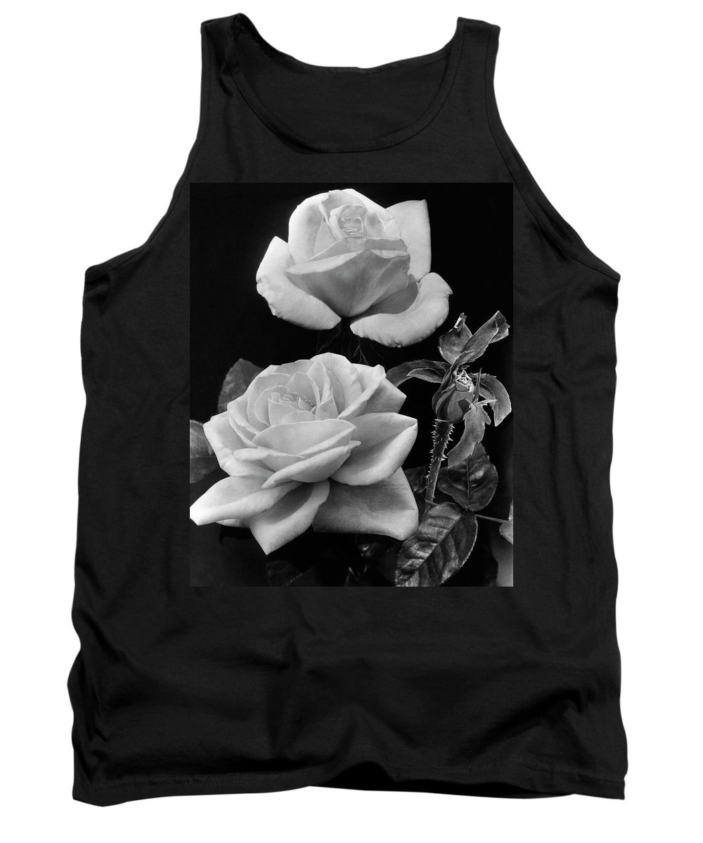 Flowers Tank Top featuring the photograph 'george Arends' Roses by J. Horace McFarland