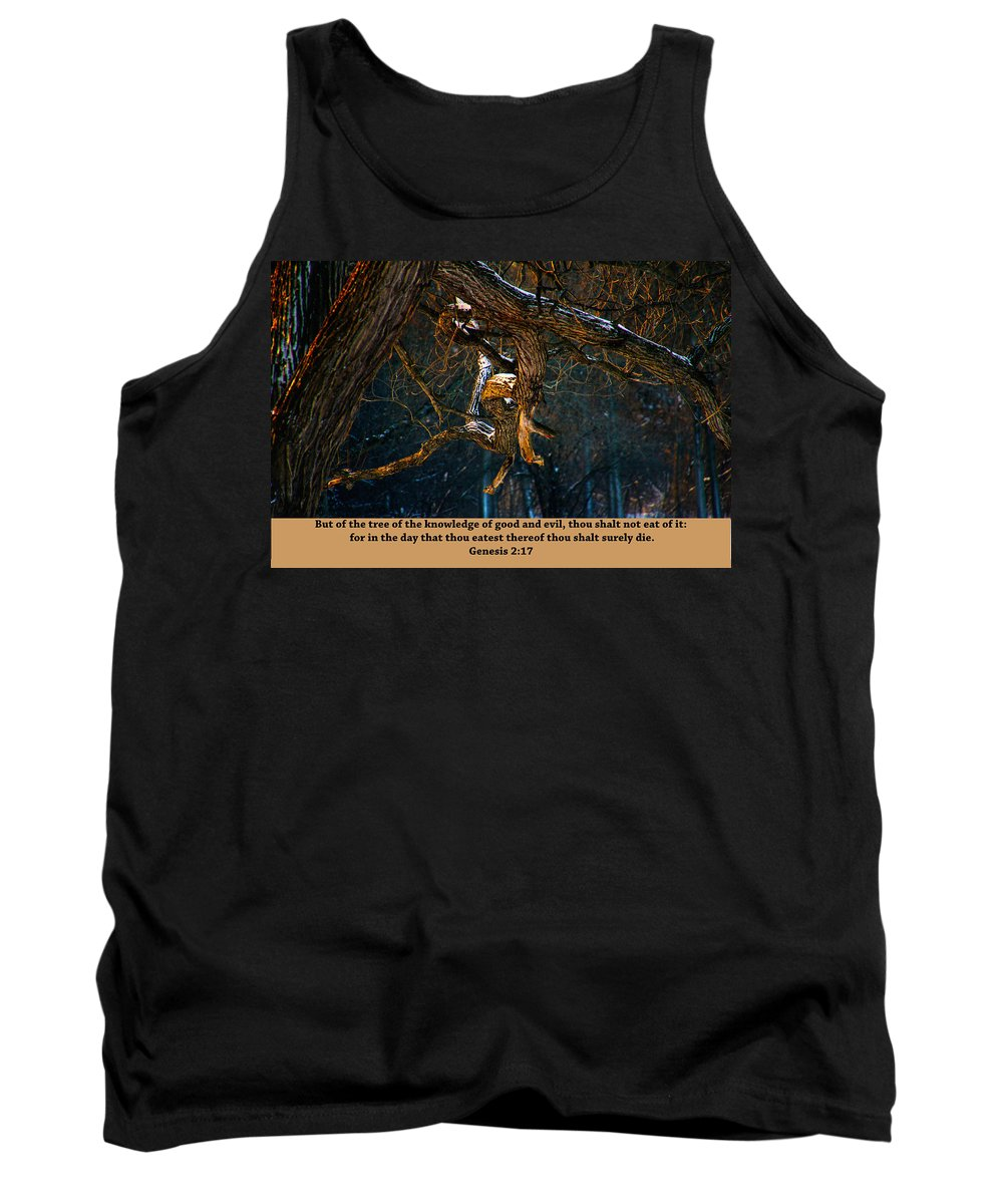 Tree Tank Top featuring the photograph Good And Evil by Debbie Nobile
