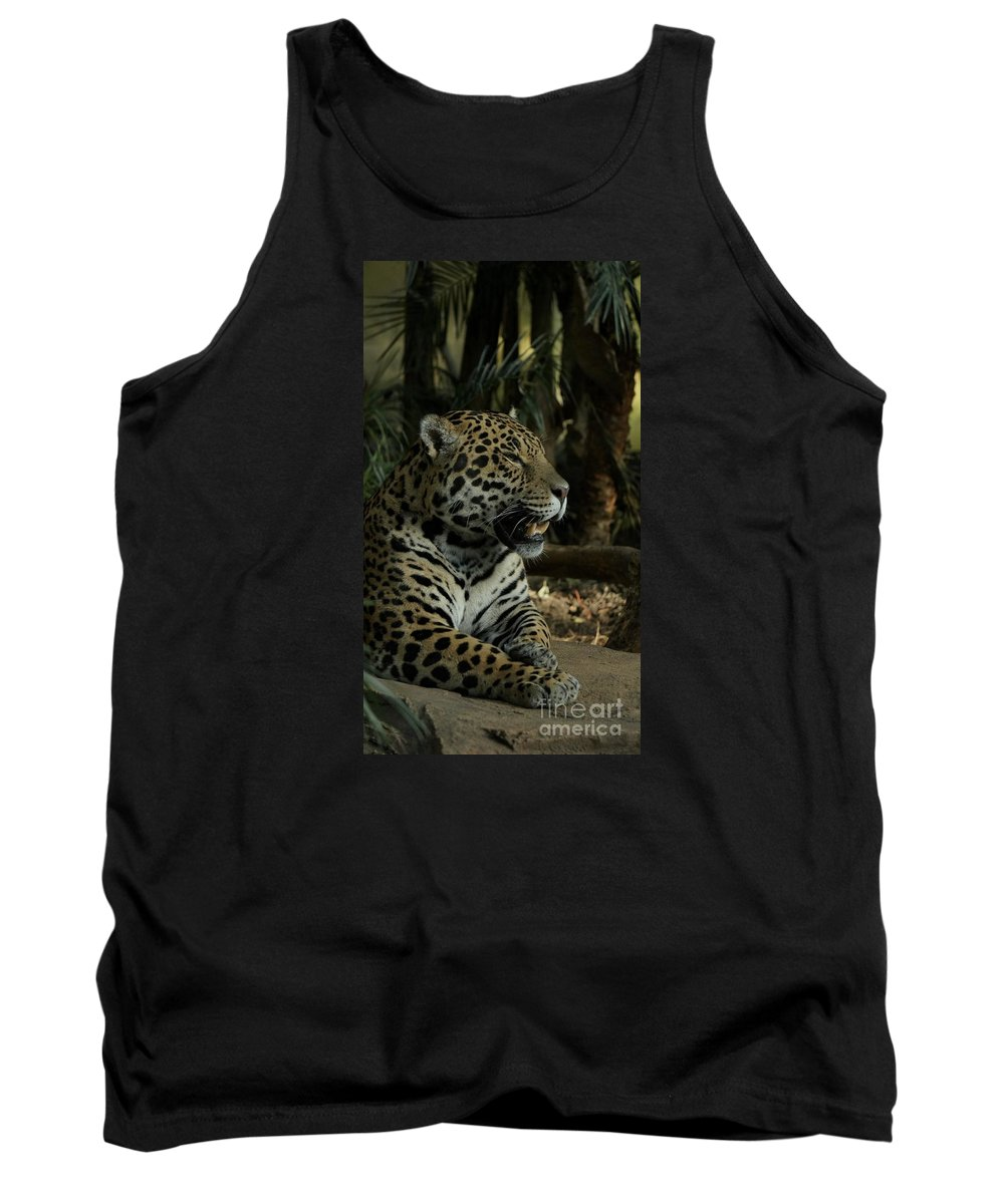 Big Cat Tank Top featuring the photograph Gorgeous Jaguar by Mickey At Rawshutterbug