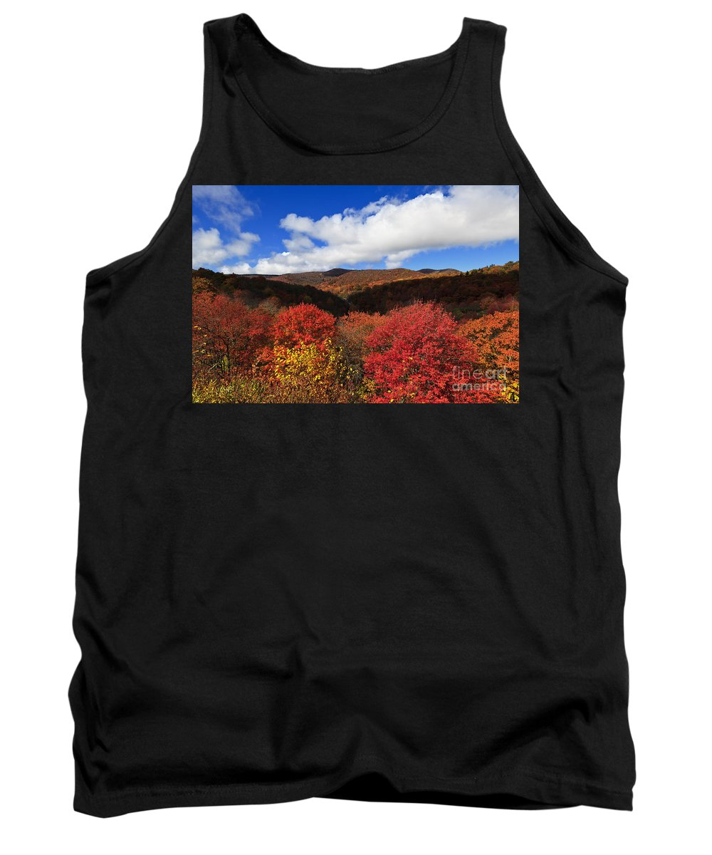 Mountains Tank Top featuring the photograph Graveyard Fields In The Mountains by Jill Lang